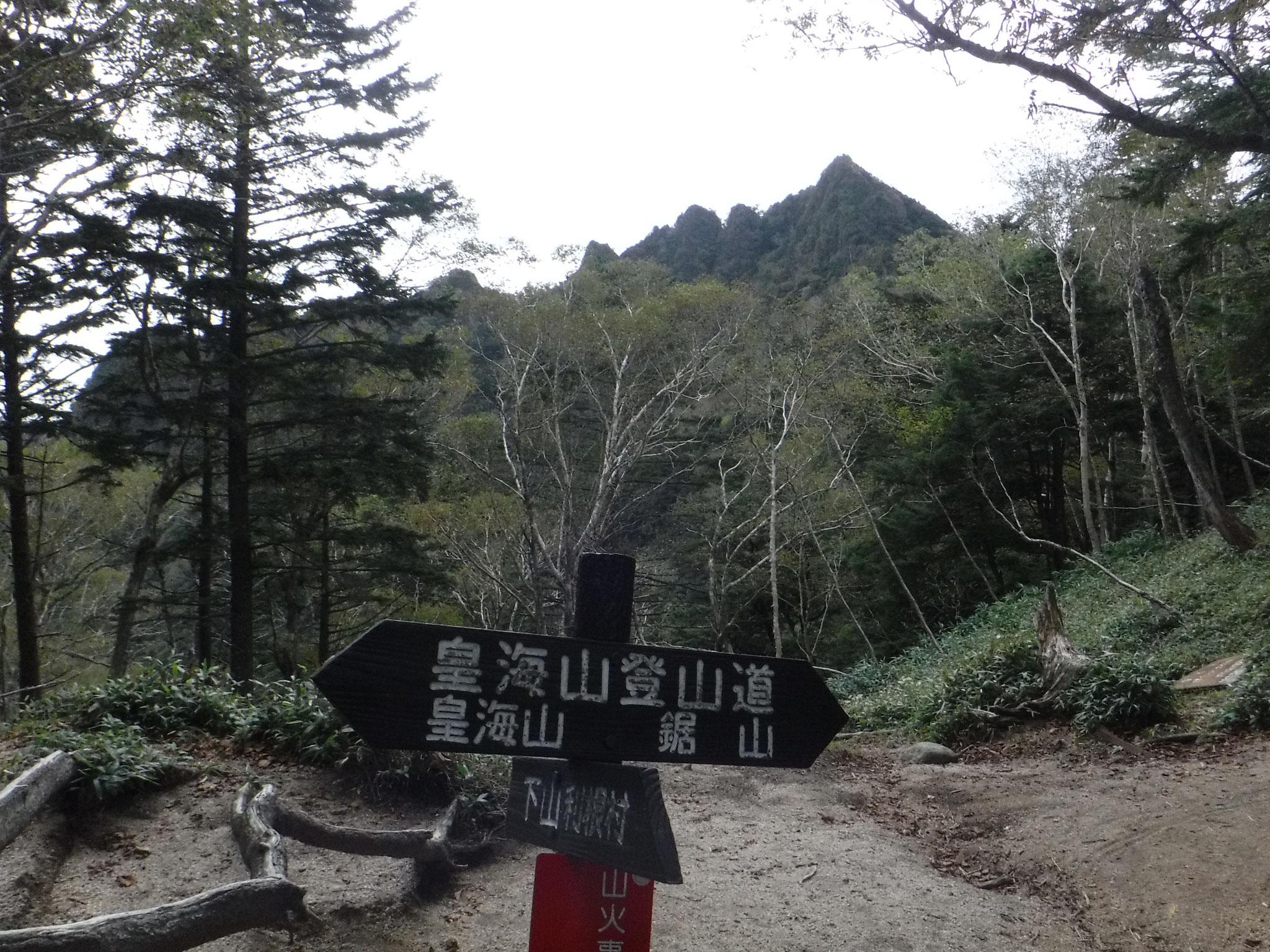 鞍部からの鋸岳、楽しそう、展望良さそうな稜線