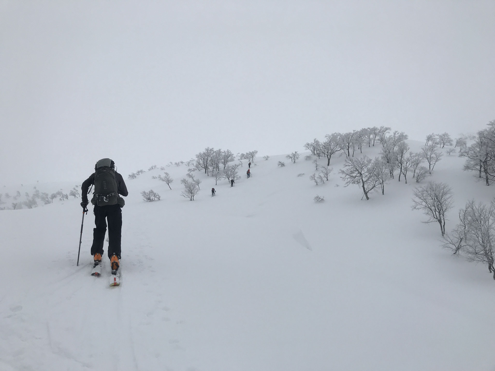 上部は新雪