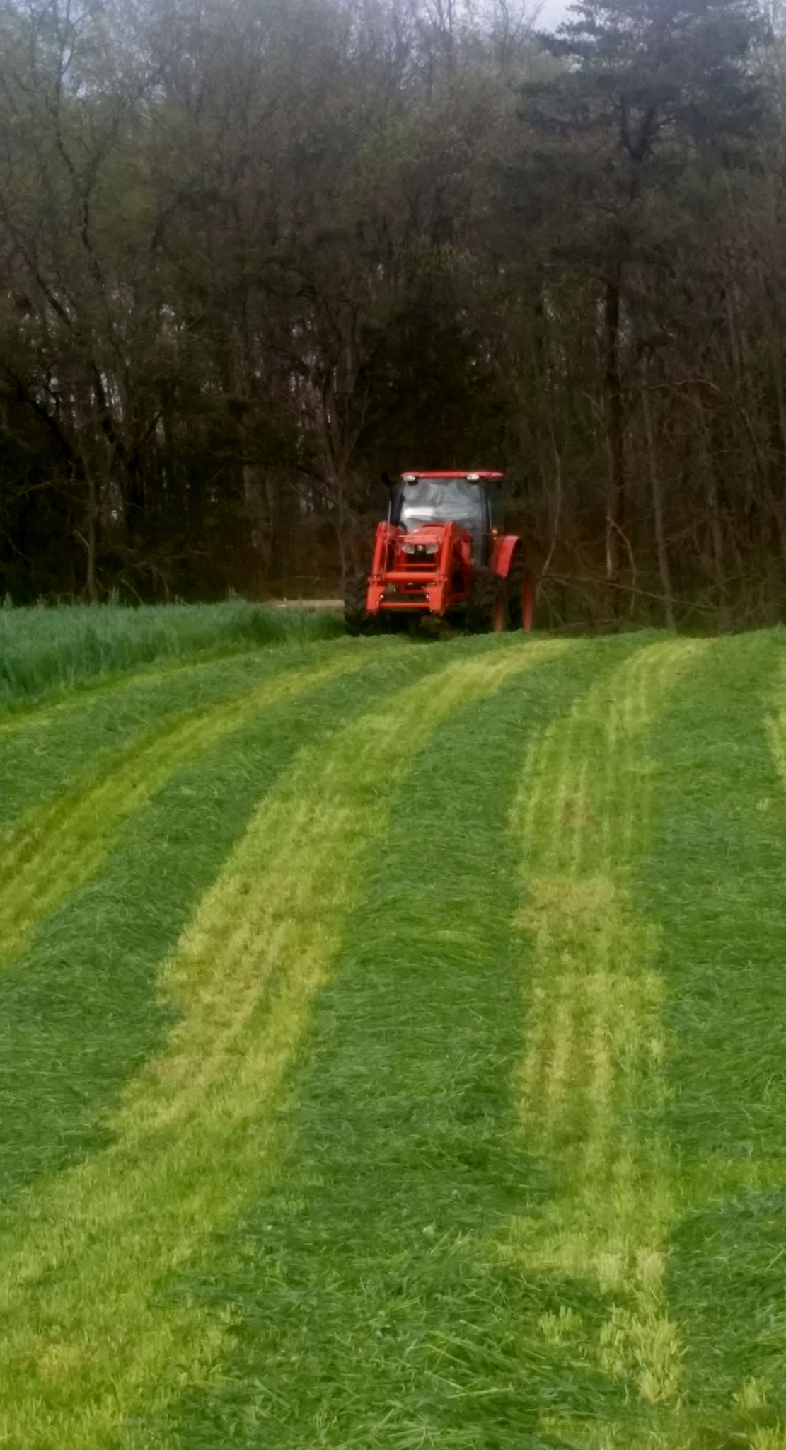 Making hay while the sun shines!