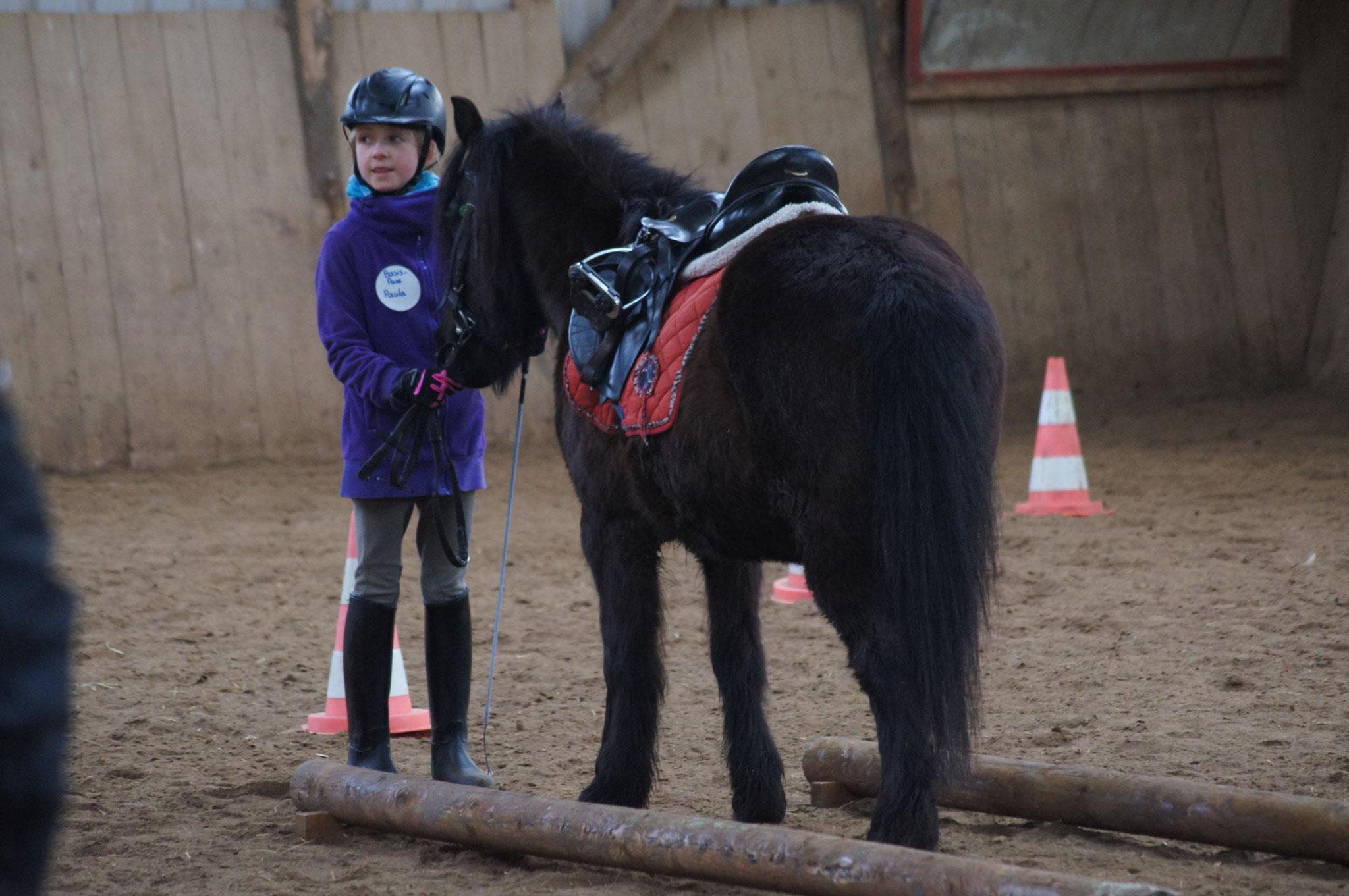 Paula mit Surprice beim Pferdeführerschein Umgang