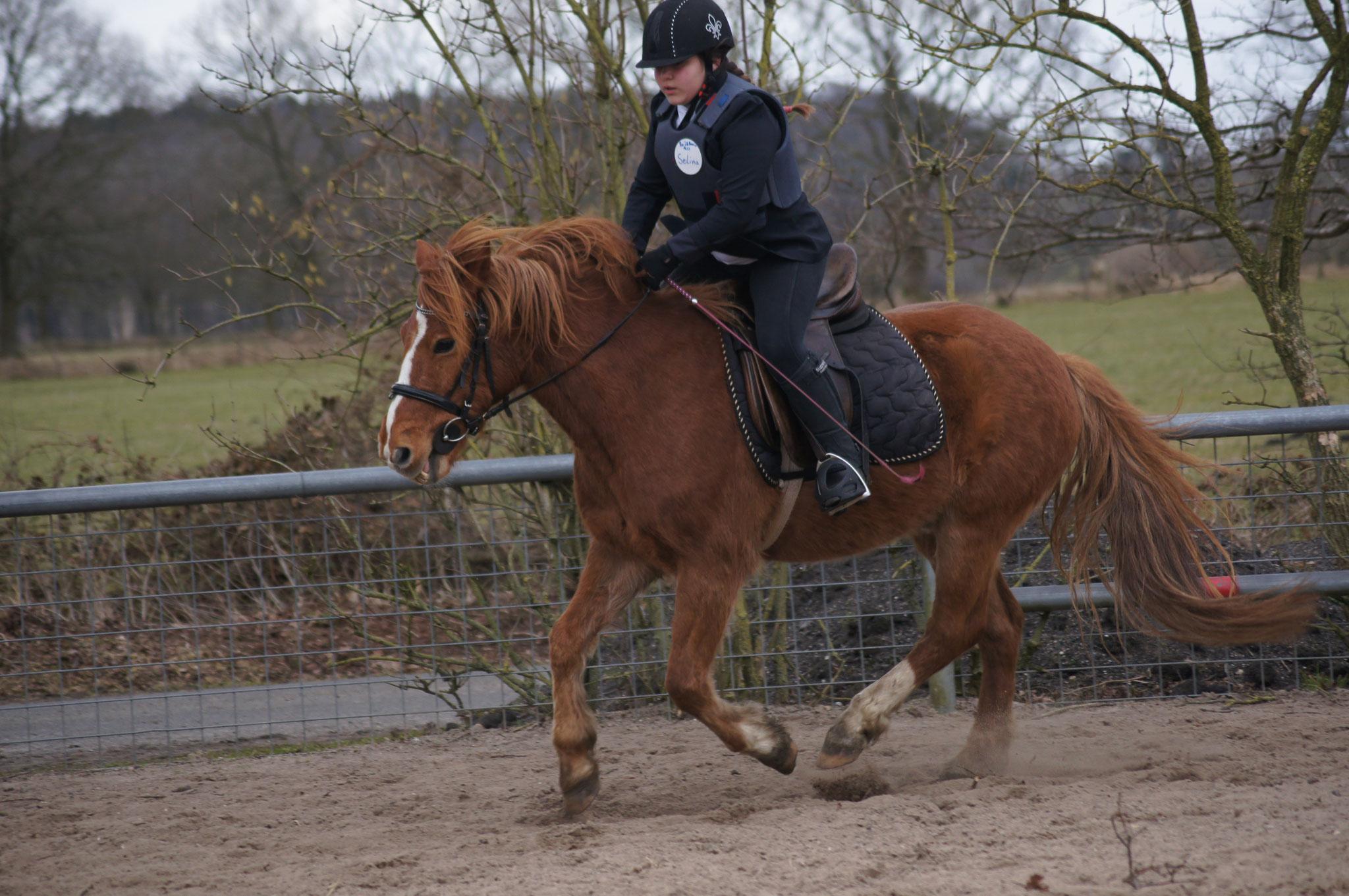 Selina mit Pascal beim Pferdeführerschein Reiten