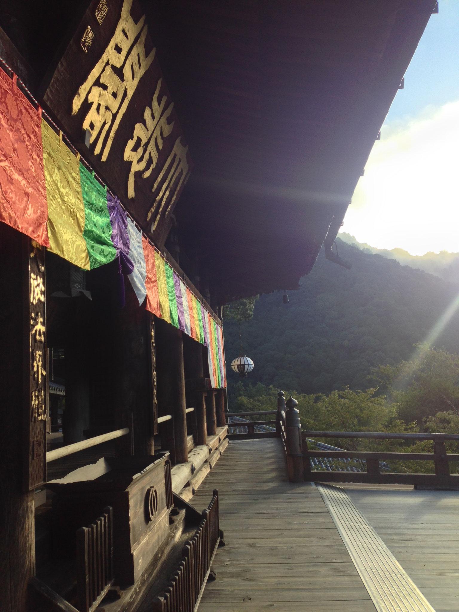 朝勤行は約40分ほどで終了。その後は、清々しい朝の長谷寺境内の散策を楽しみましょう ♪