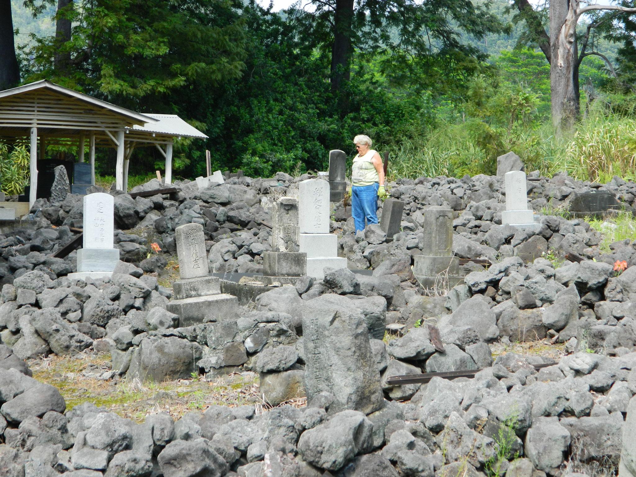 新メンバーと共にパハラ日系人墓地の清掃