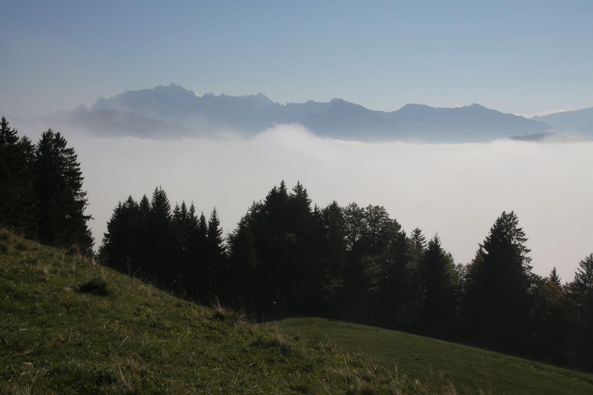 Aussicht vom Girlen Richtung Alpstein