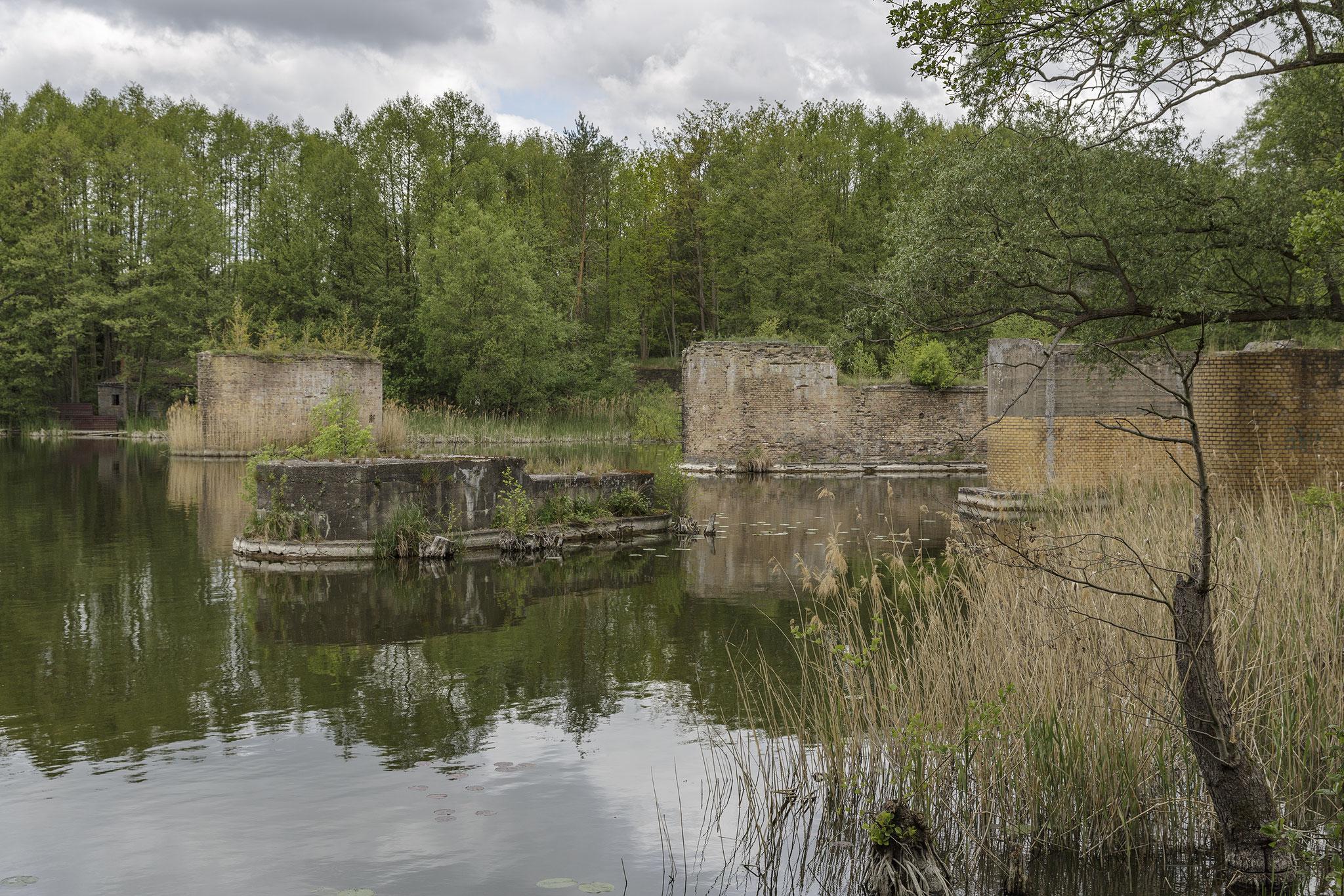 Schumka lake, 2019