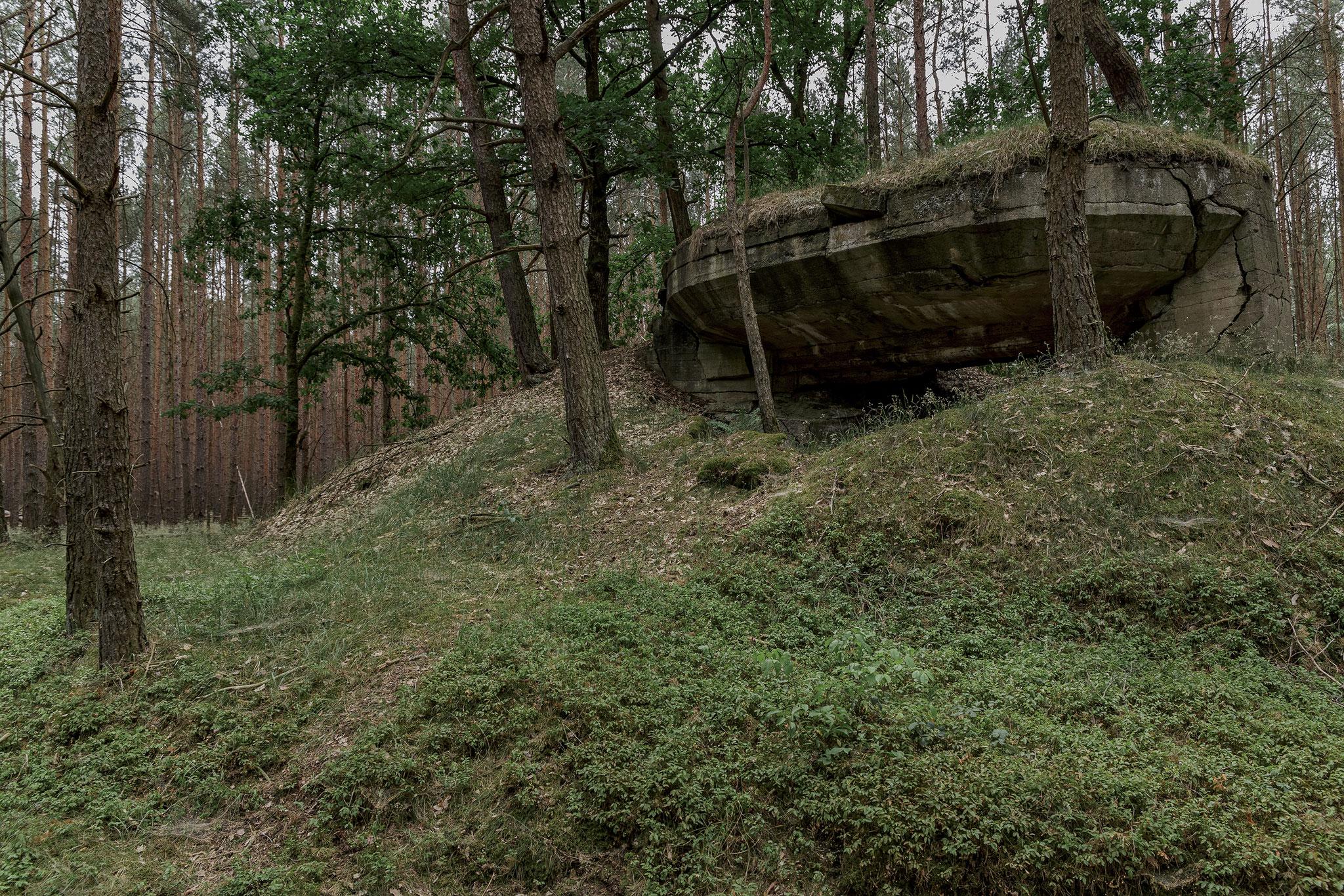 Observation bunker, western artillery range, 2018