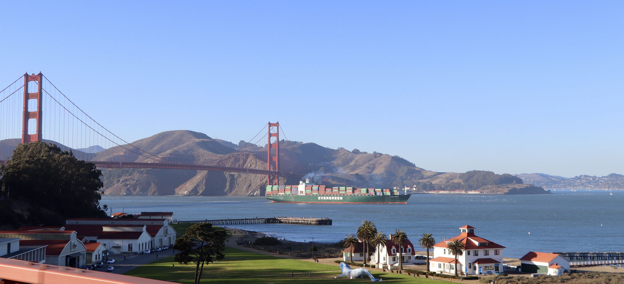 this picture was a lucky shot straight out of our truck as we head to cross the golden gate bridge north