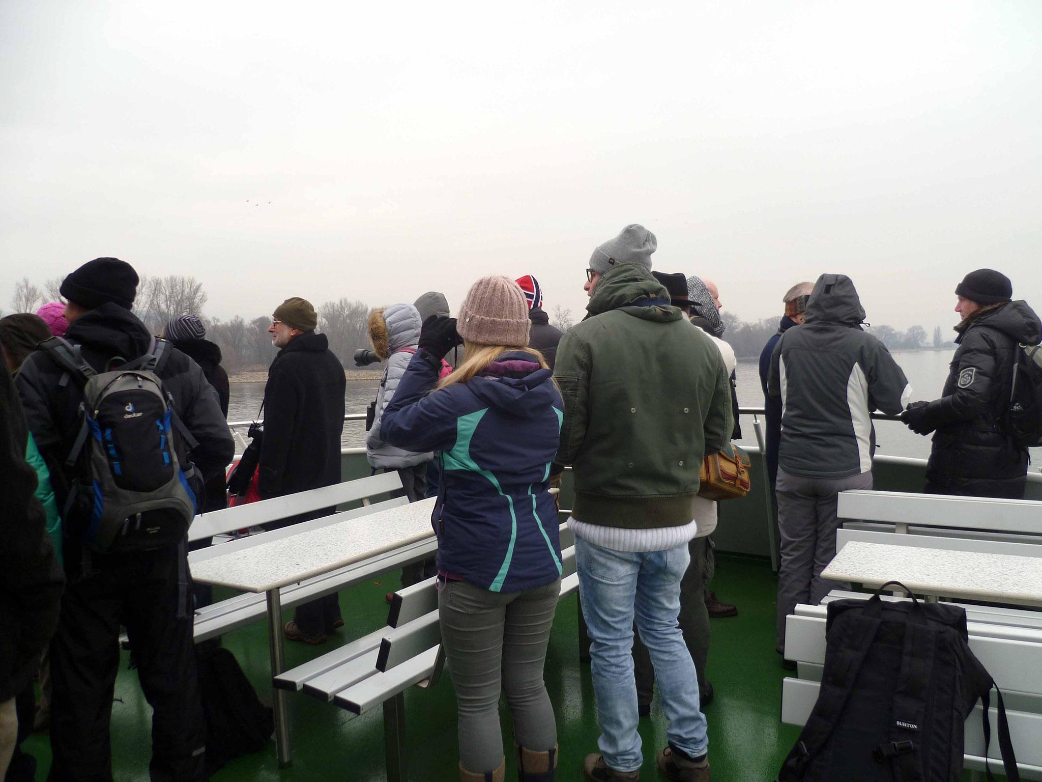 Beobachtung vom Rheinschiff aus