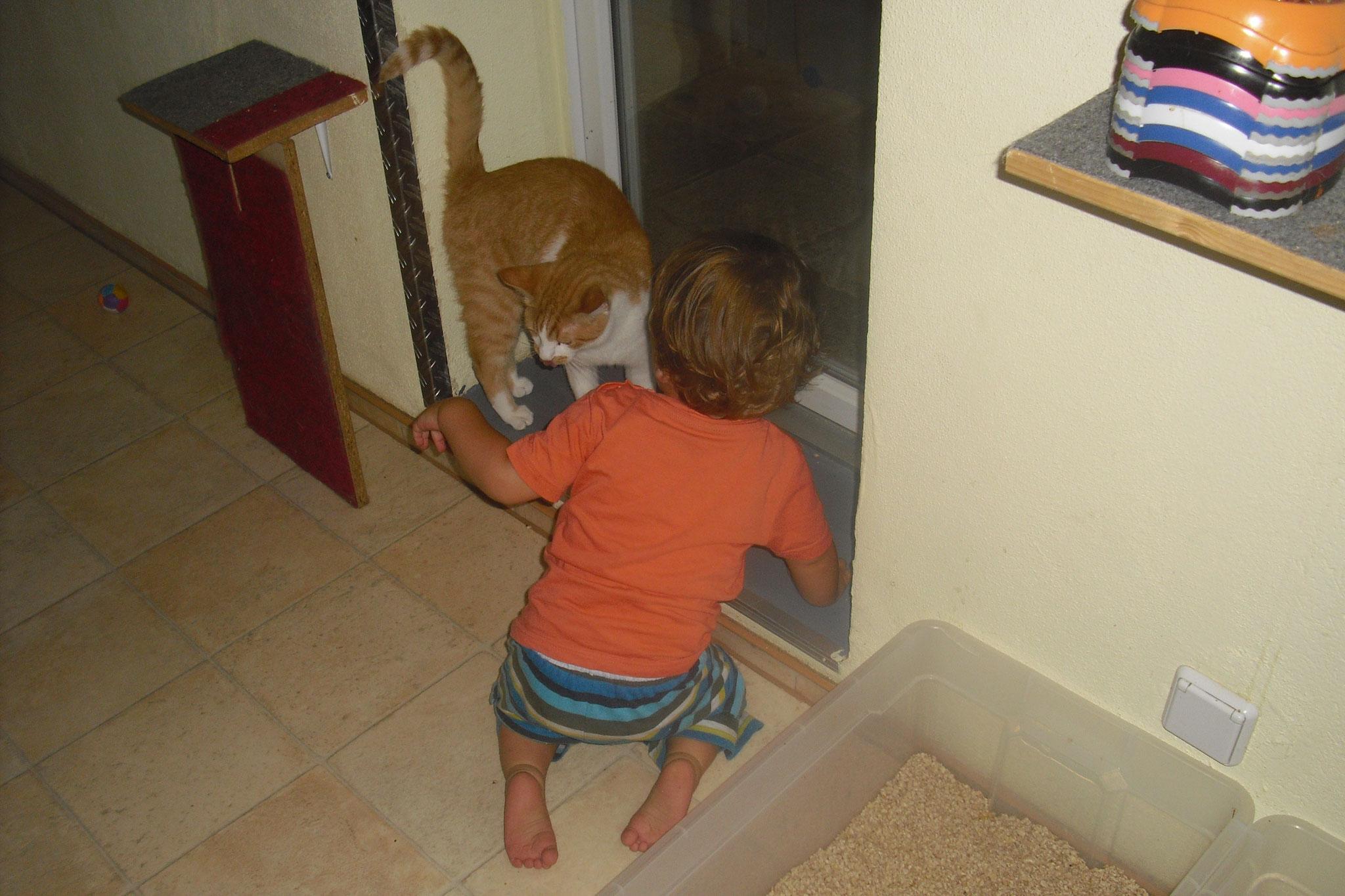 Moritz mag kleine Kinder