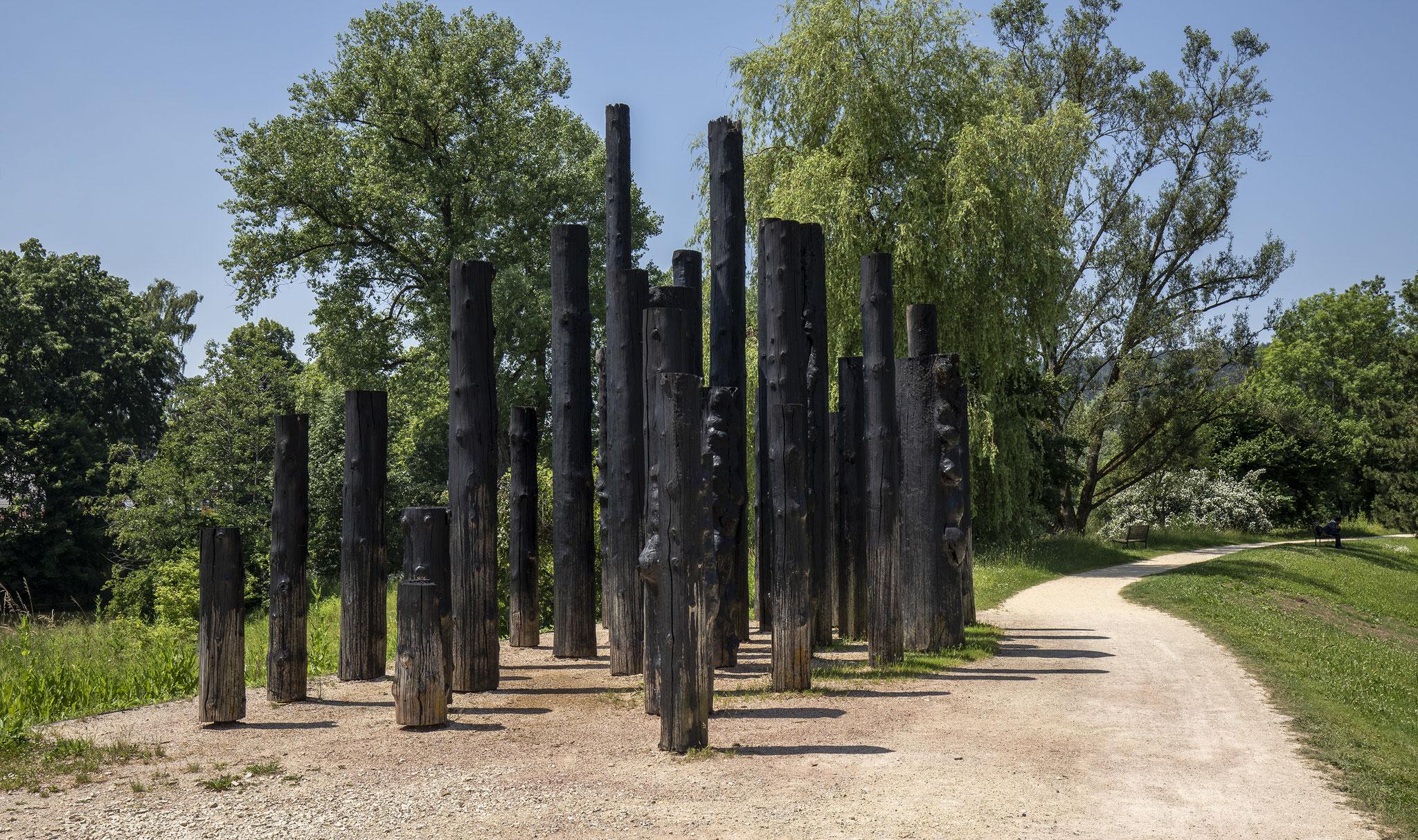 JOHANNES PFEIFFER Metamorphose, 2003 - 2019 Holzstämme, Bitumen