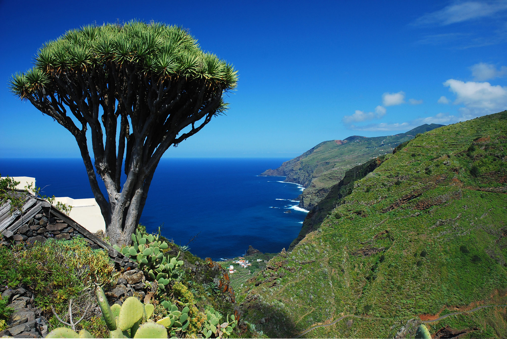 Blick auf Barlovento, La Palma