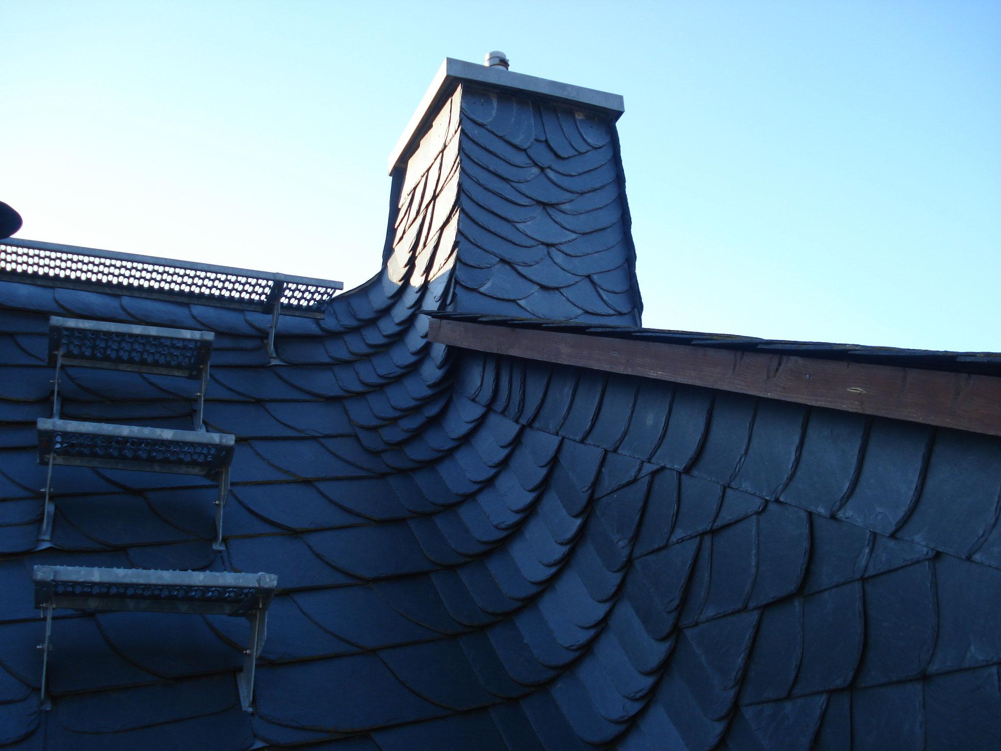 Rechte Wangenkehle/eigenes Wohnhaus
