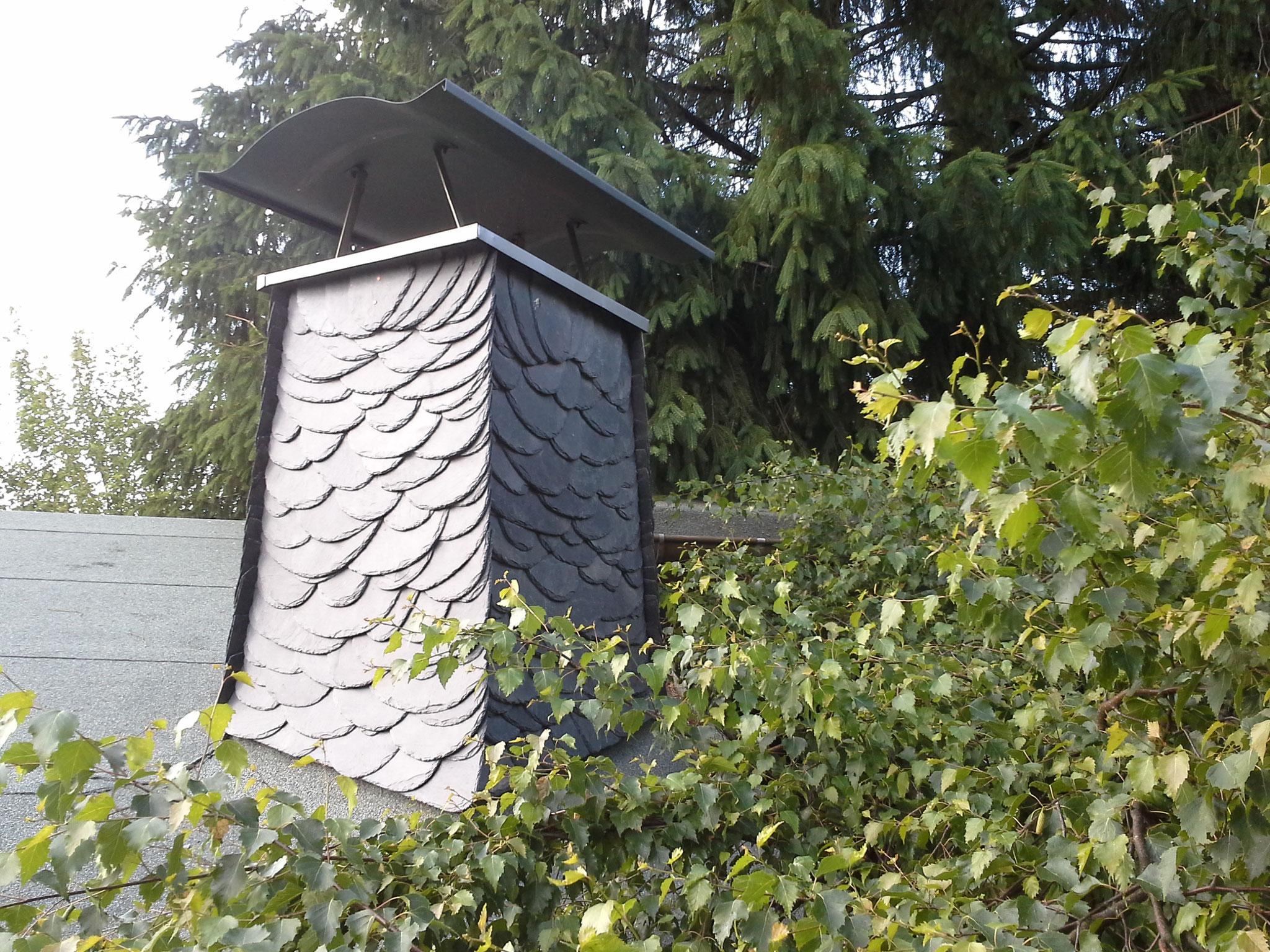 Wilde Deckung an Schornstein in Naturschiefer/ Königswalde