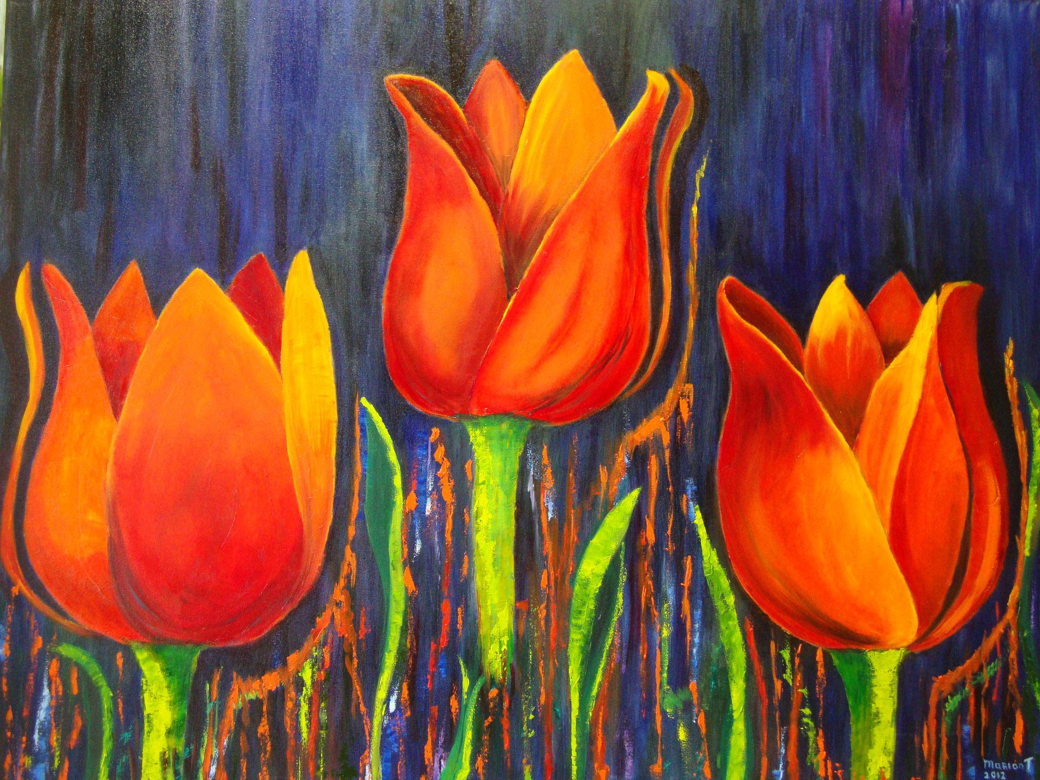 de drie tulpen 70 x 90 br
