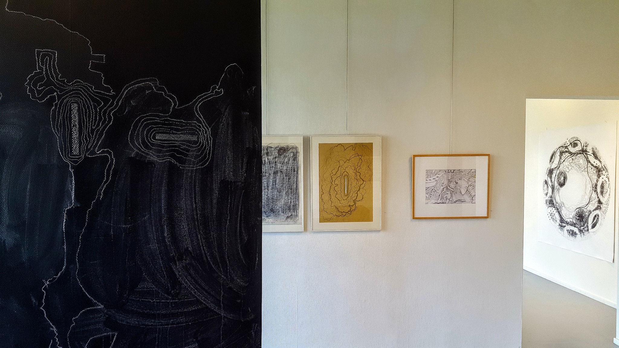 Petersprinciple            Foto en tekening Allie van Altena