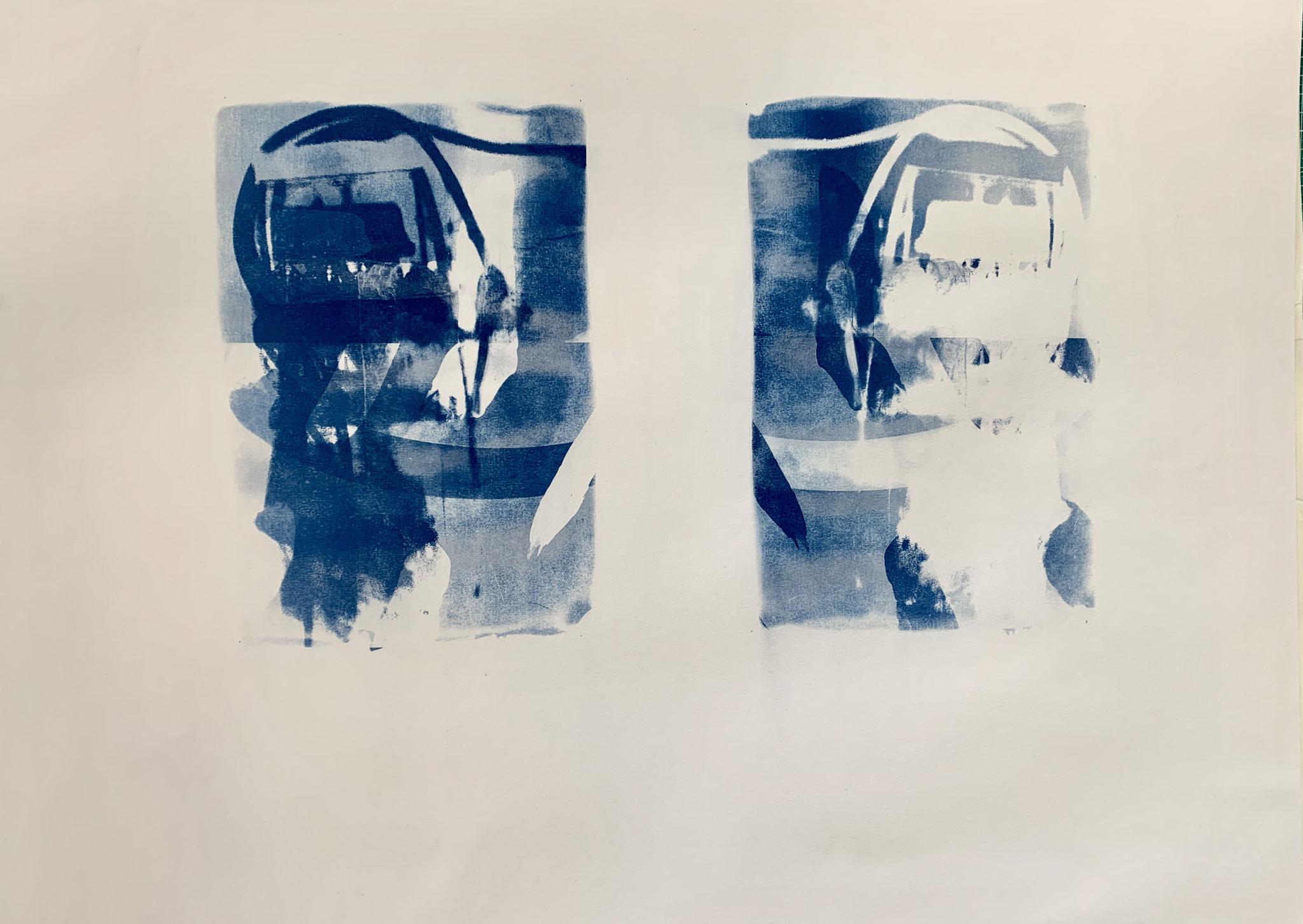 Kopfquallen, Cyanotypie, 50 x 70 cm,  2020