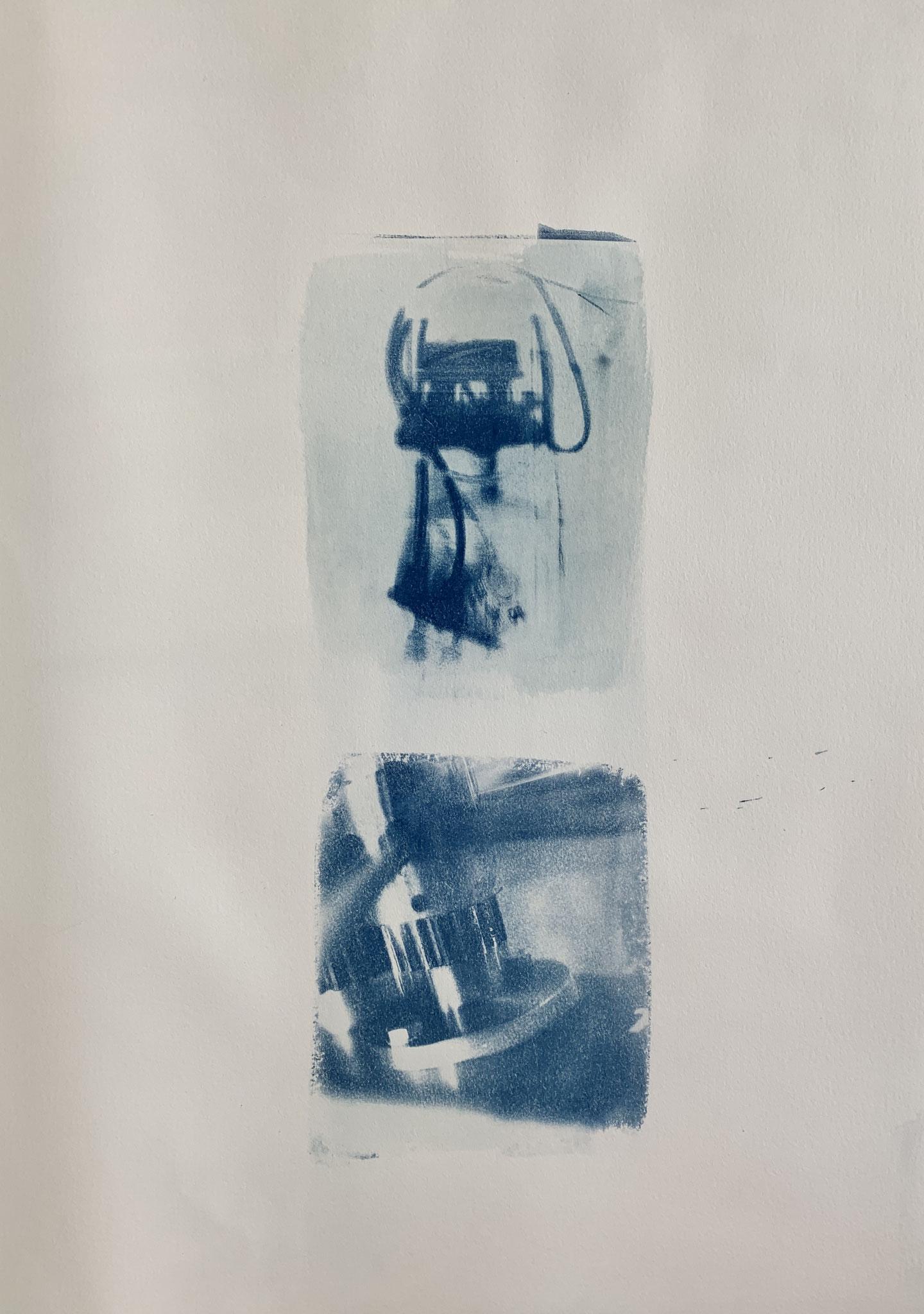 Lampus ex machina, Cyanotypie, 50 x 70 cm,  2020