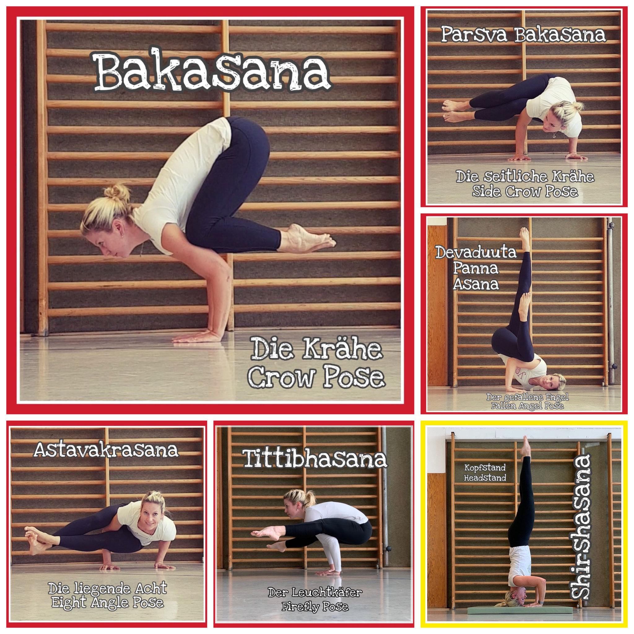 Home   AVILAFLOW Yoga