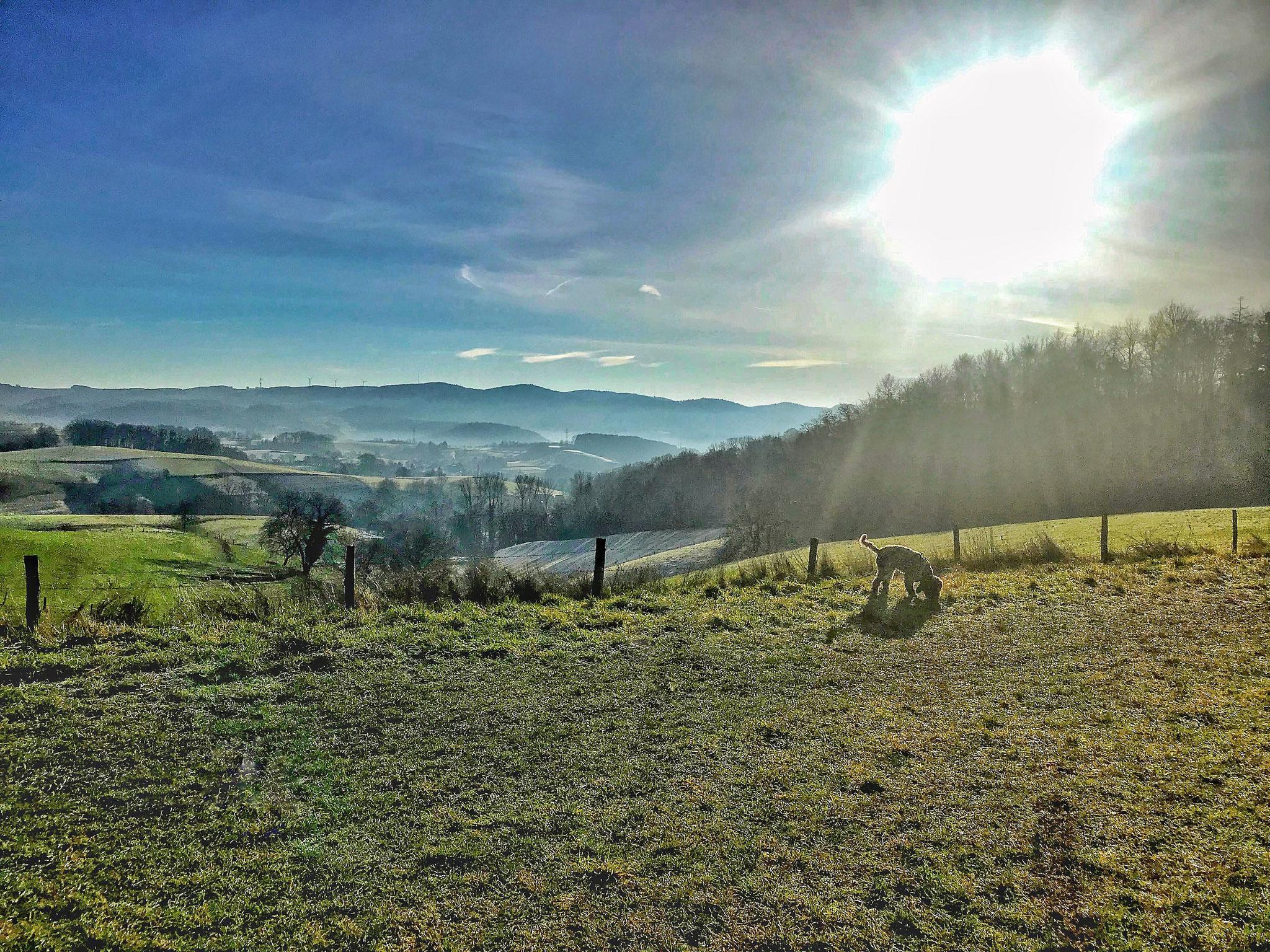 Hemsbach auf dem Berg