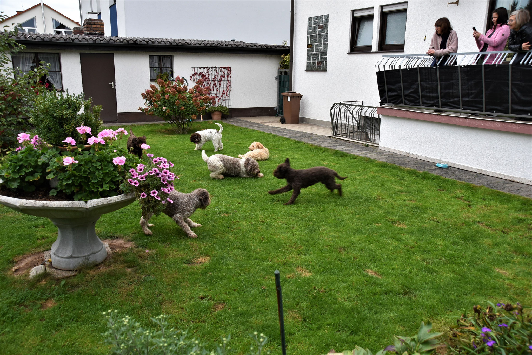 gemeinsames Spiel im Garten
