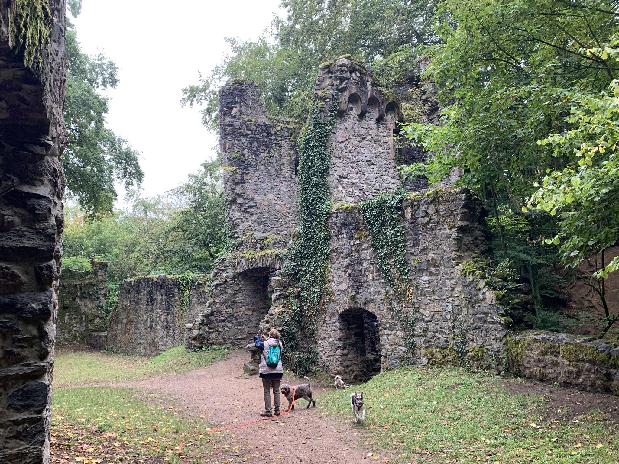 tschüss Ruine Rodenstein