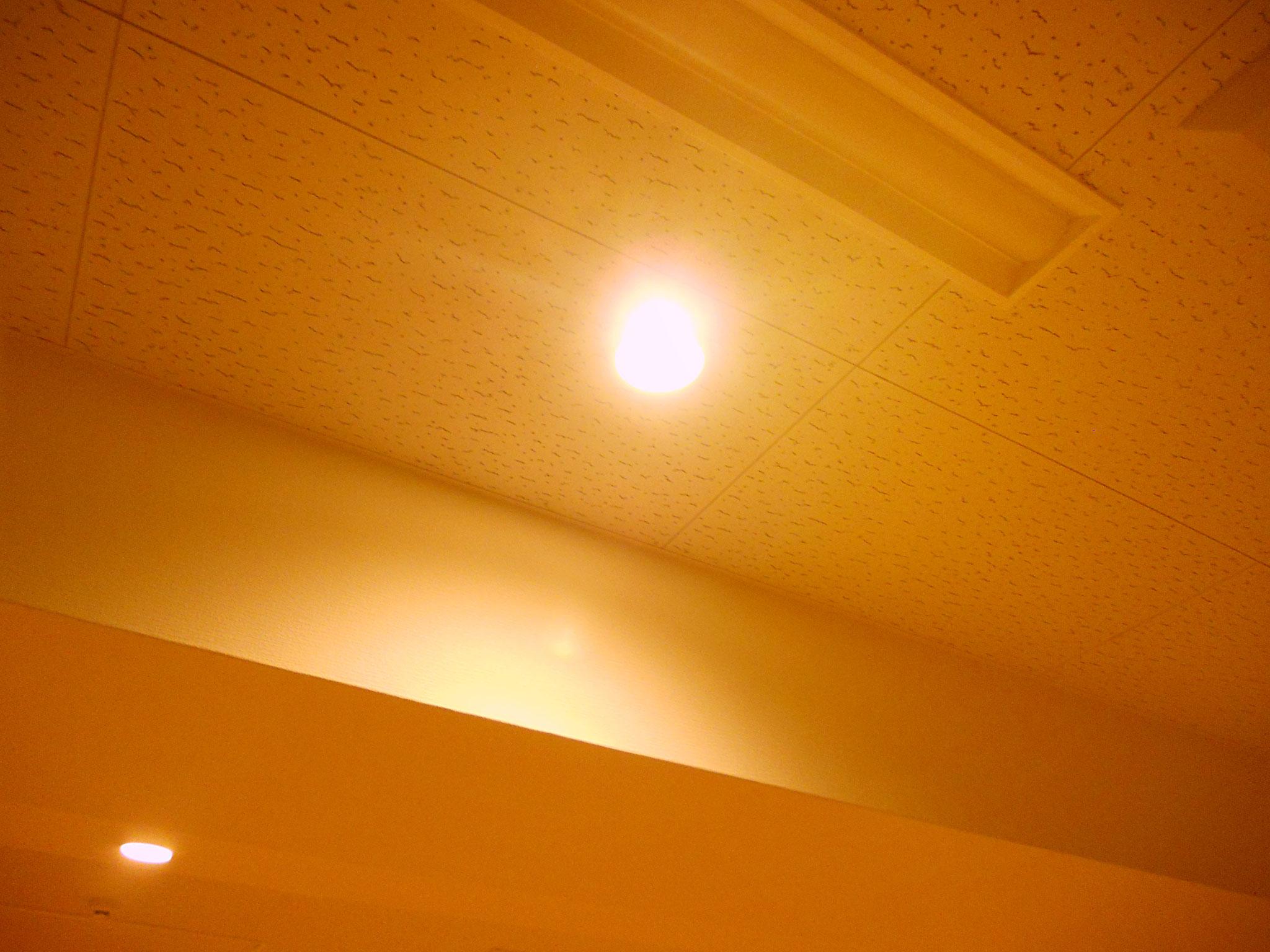 明りは二種類あり使い分けができます。