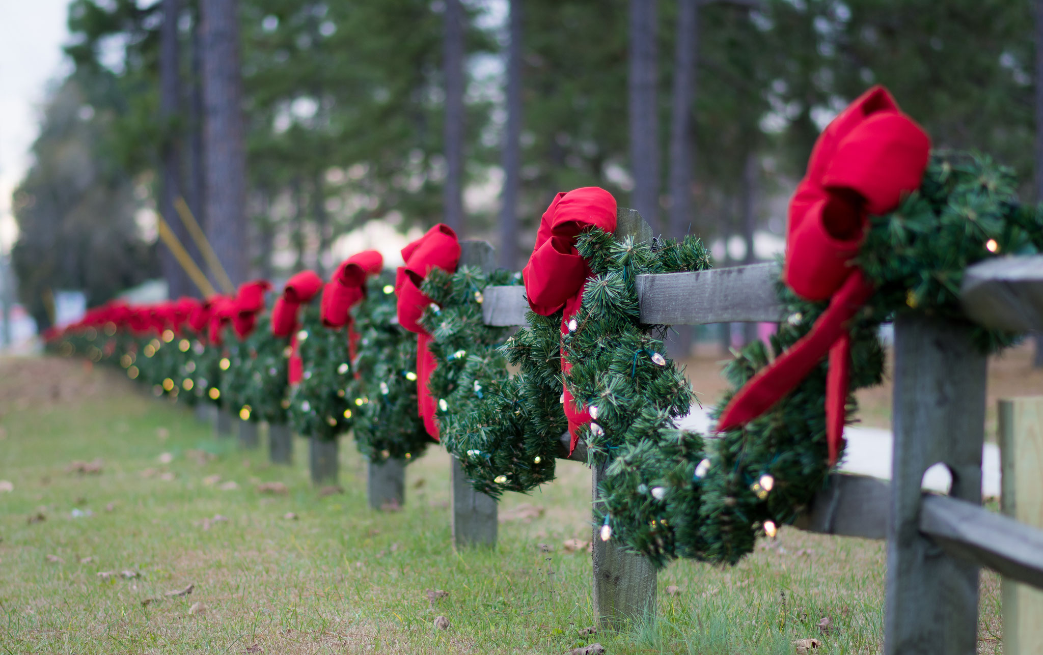 outdoor commercial wholesale christmas bows decorations burrindustriesllc - Wholesale Christmas Decorations Distributors