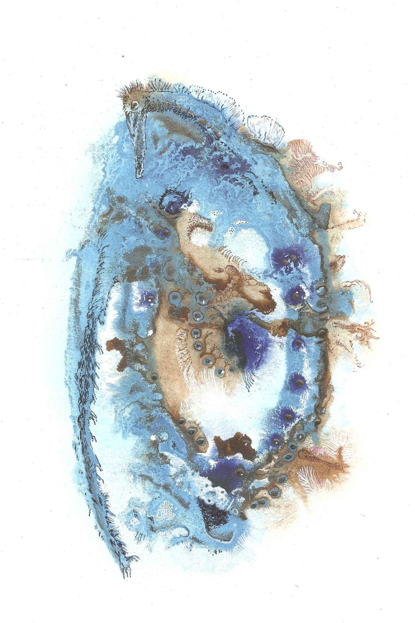 Azulave 7
