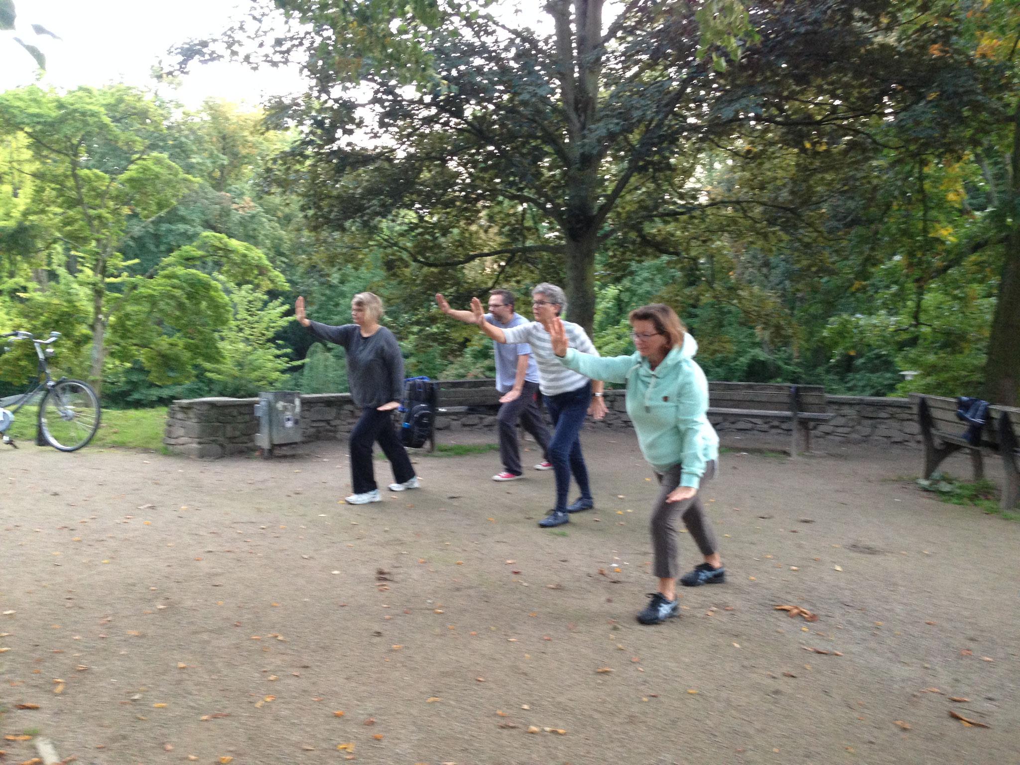 Wu Tai Chi im Rosengarten Neuss