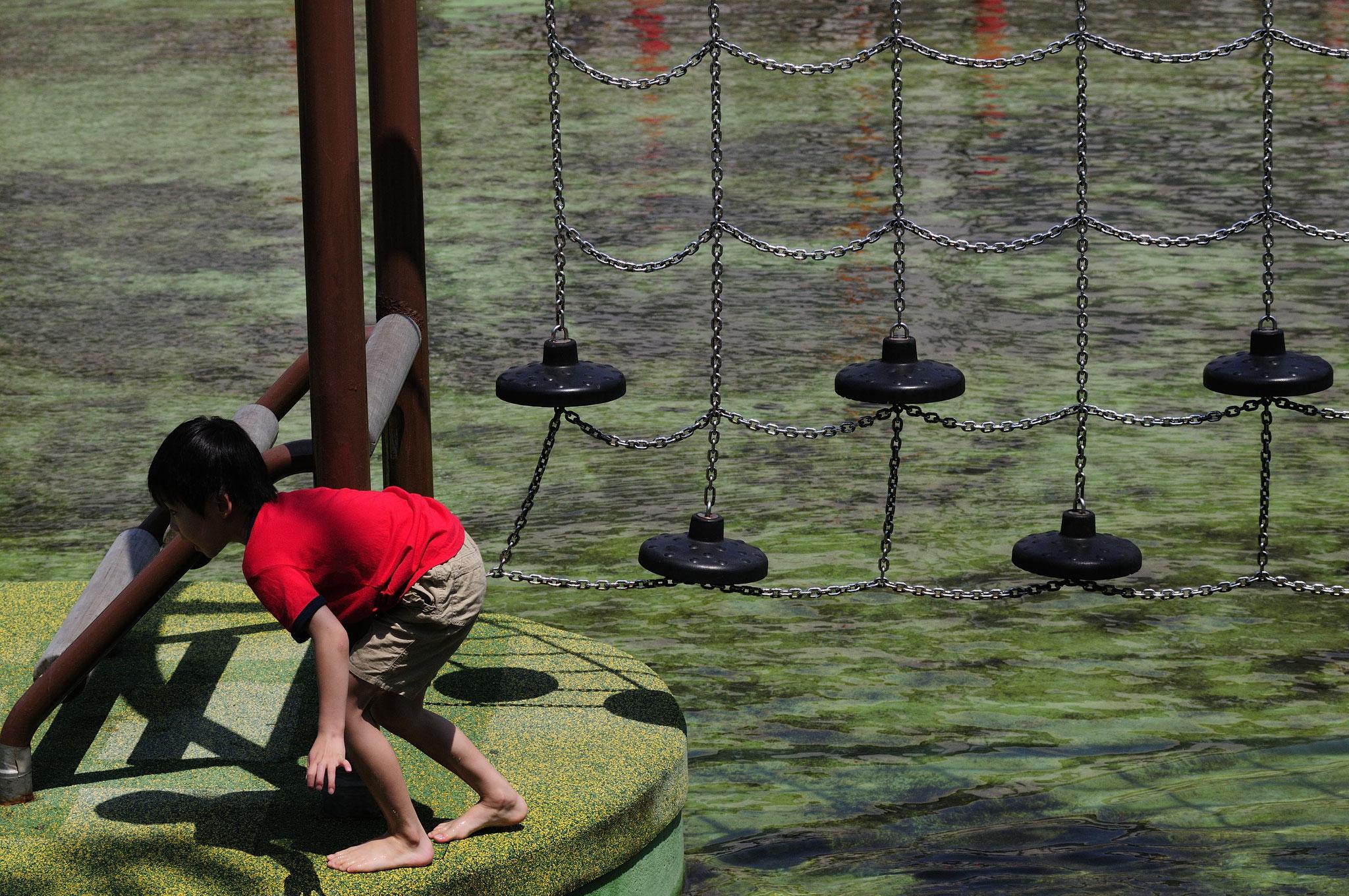 人気の水上アスレチック。横十間川親水公園