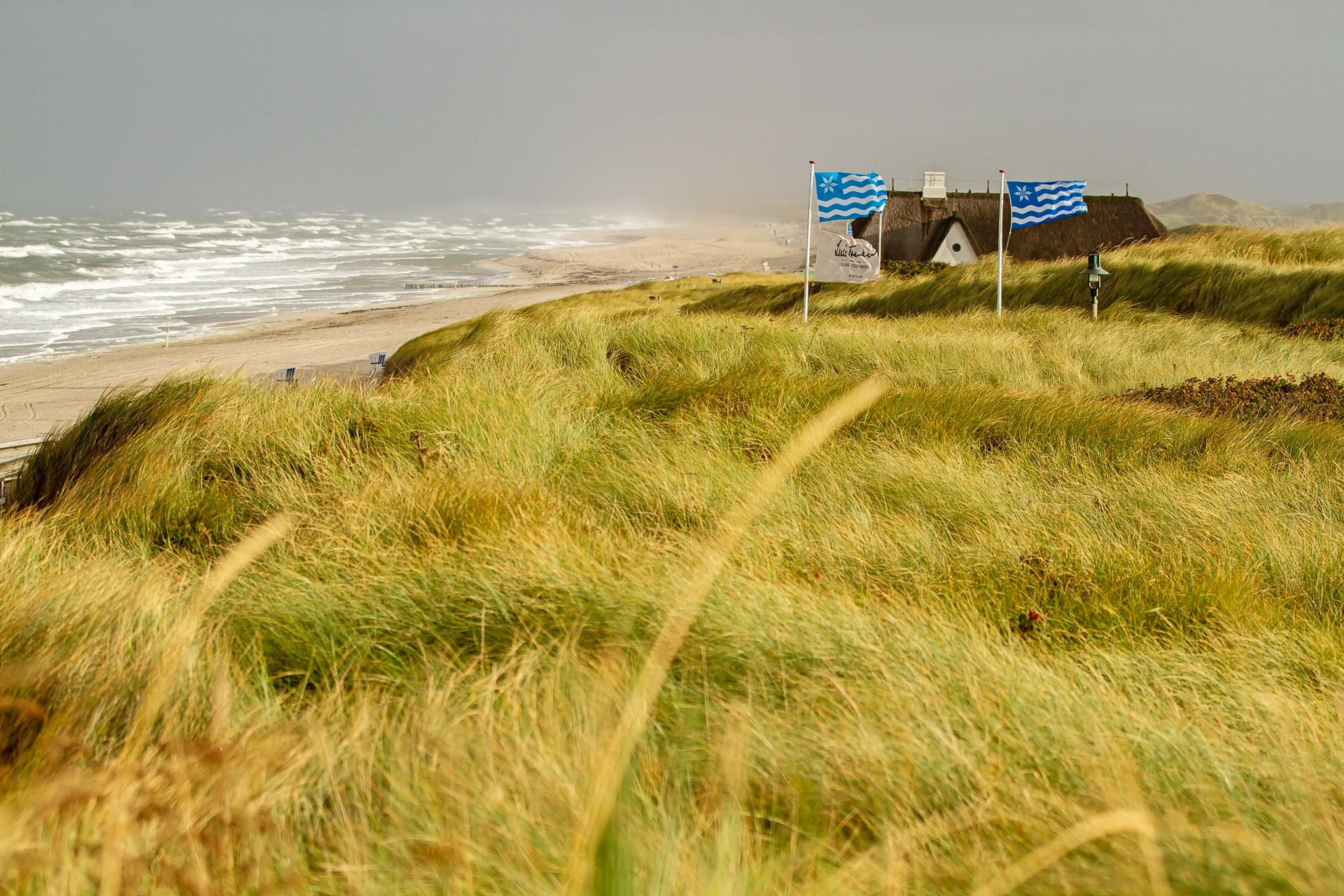 Foto der Küste in Kampen auf Sylt.