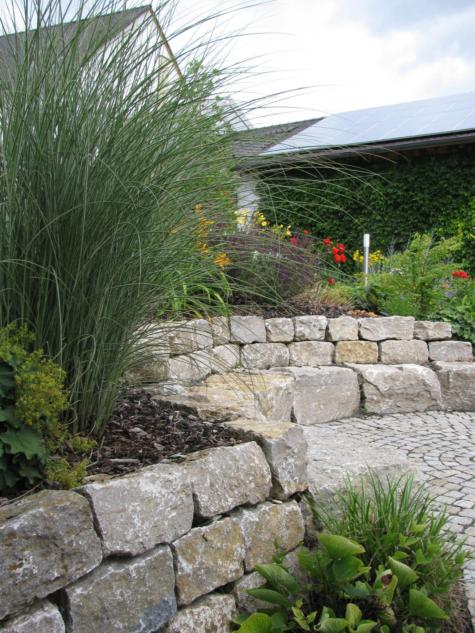 Pflanzen garten und landschaftsbau for Garten und landschaftsbau