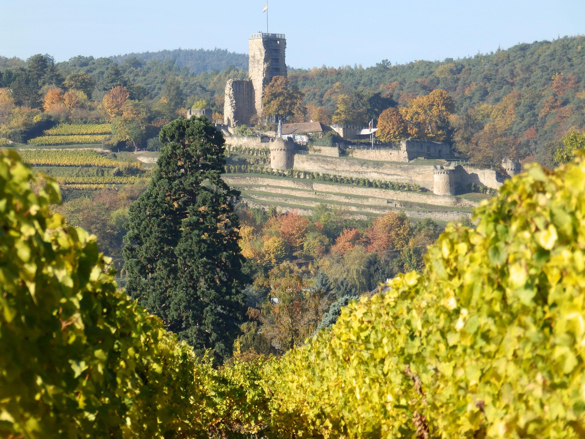 Blick zur Wachtenburg
