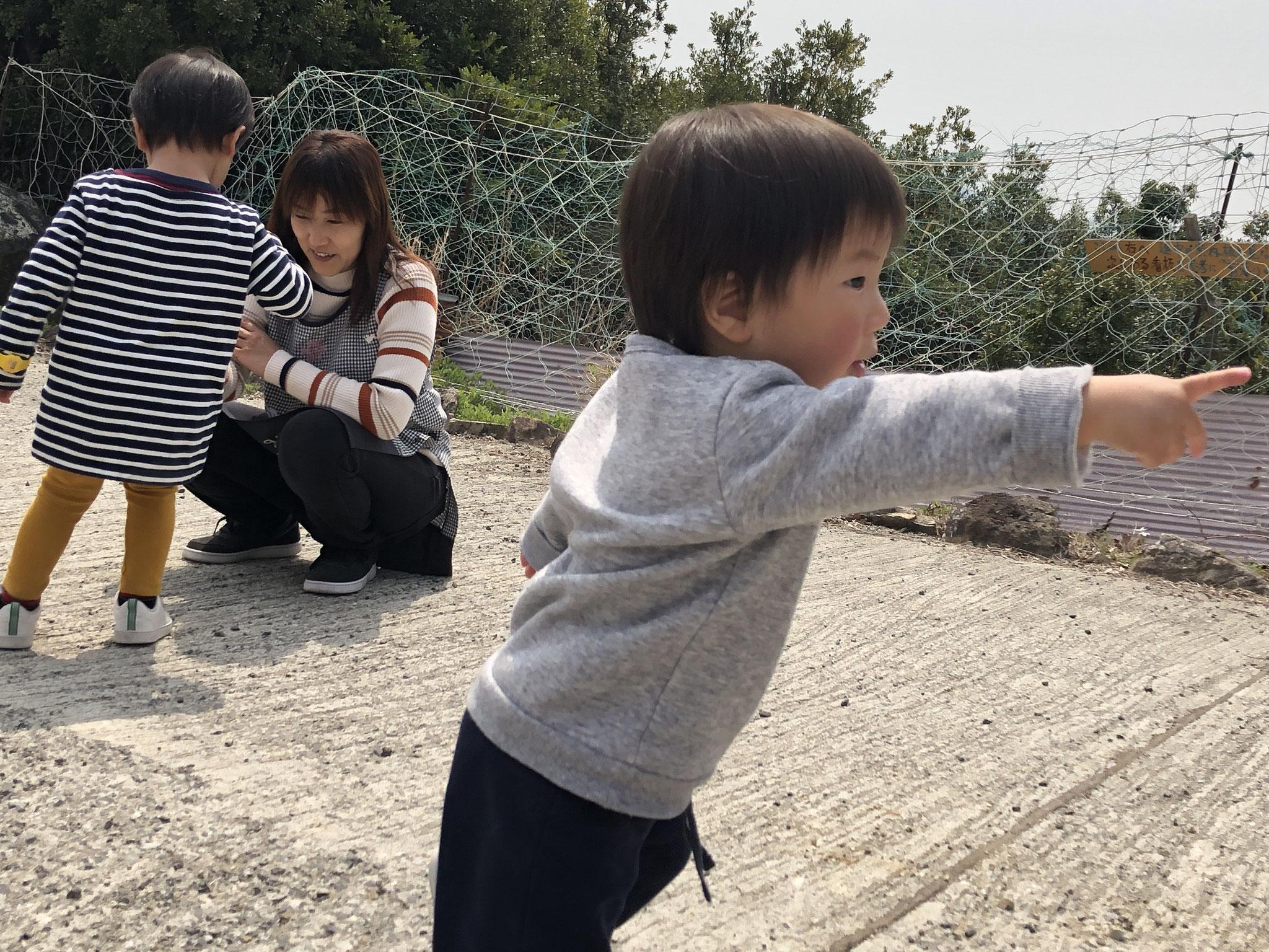 みかん山で遊ぶ子ども達