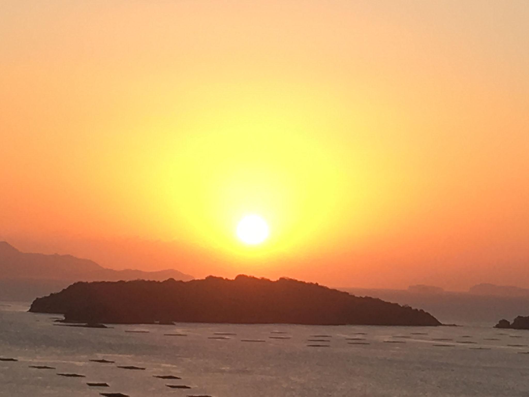 みかん山の初日の出