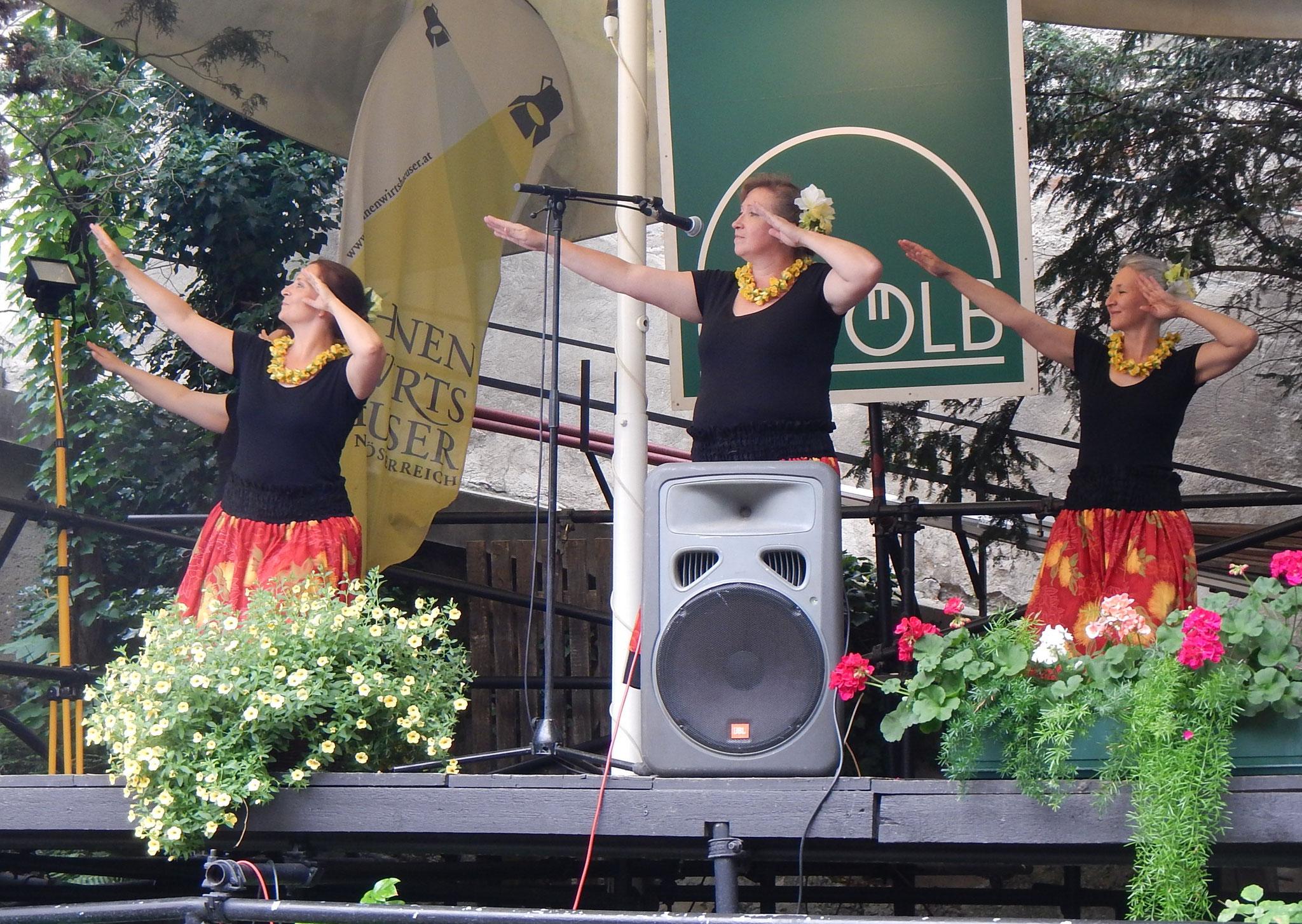 Höfefest Korneuburg 2015