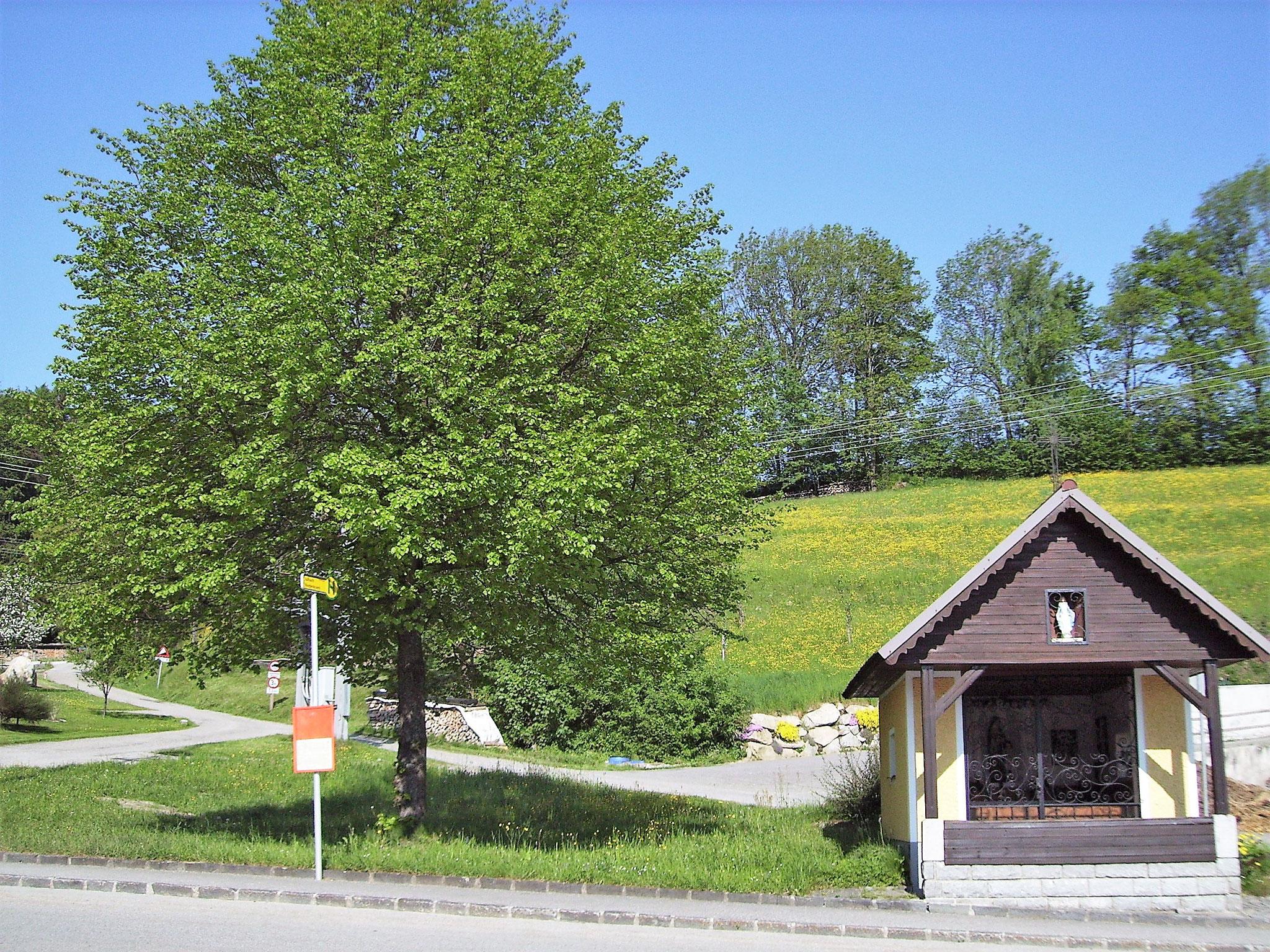 Hauseigene Kapelle (c) Pernsteiner