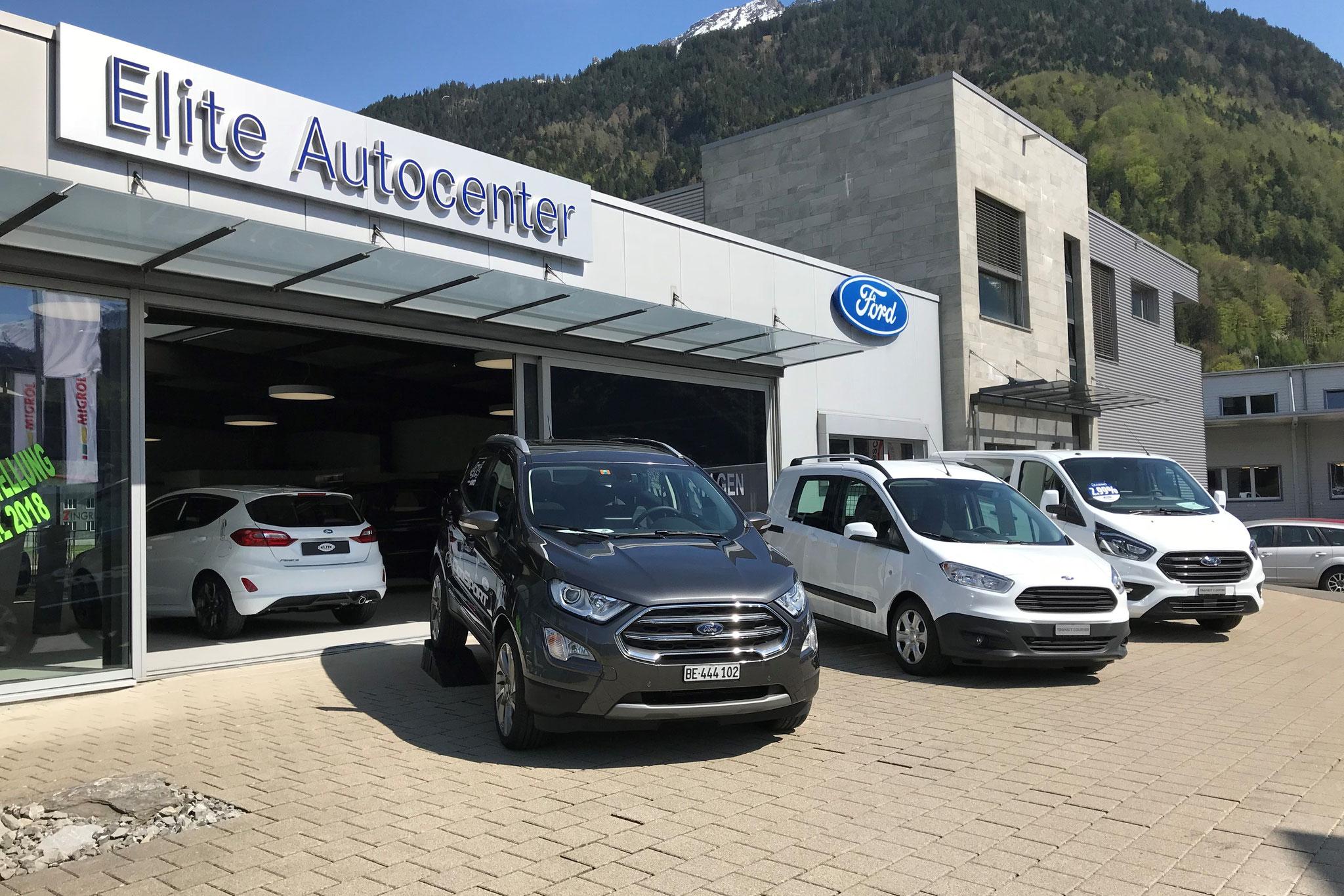 Ford EcoSport, Transit Courier und Transit Custom
