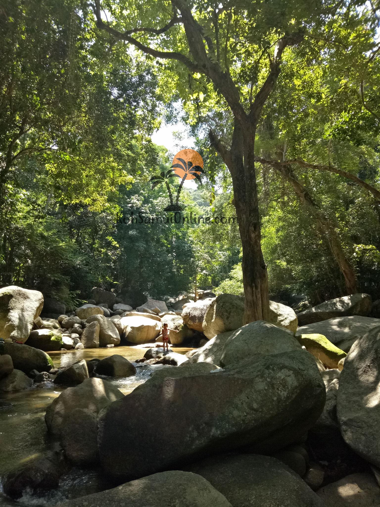 Koh Samui Sehenswürdigkeit Hin Lat Waterfall