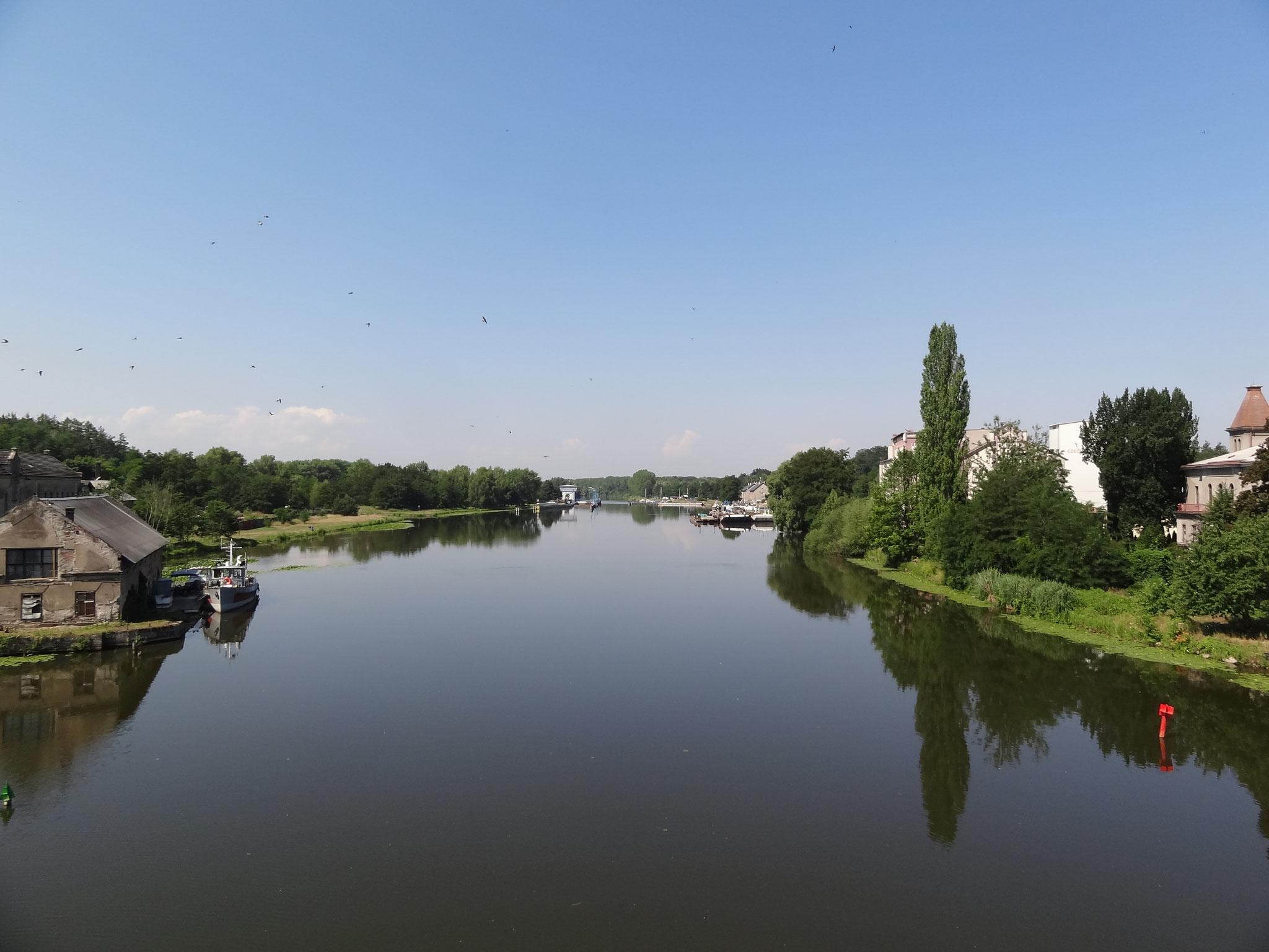 Elbe vor Kolin