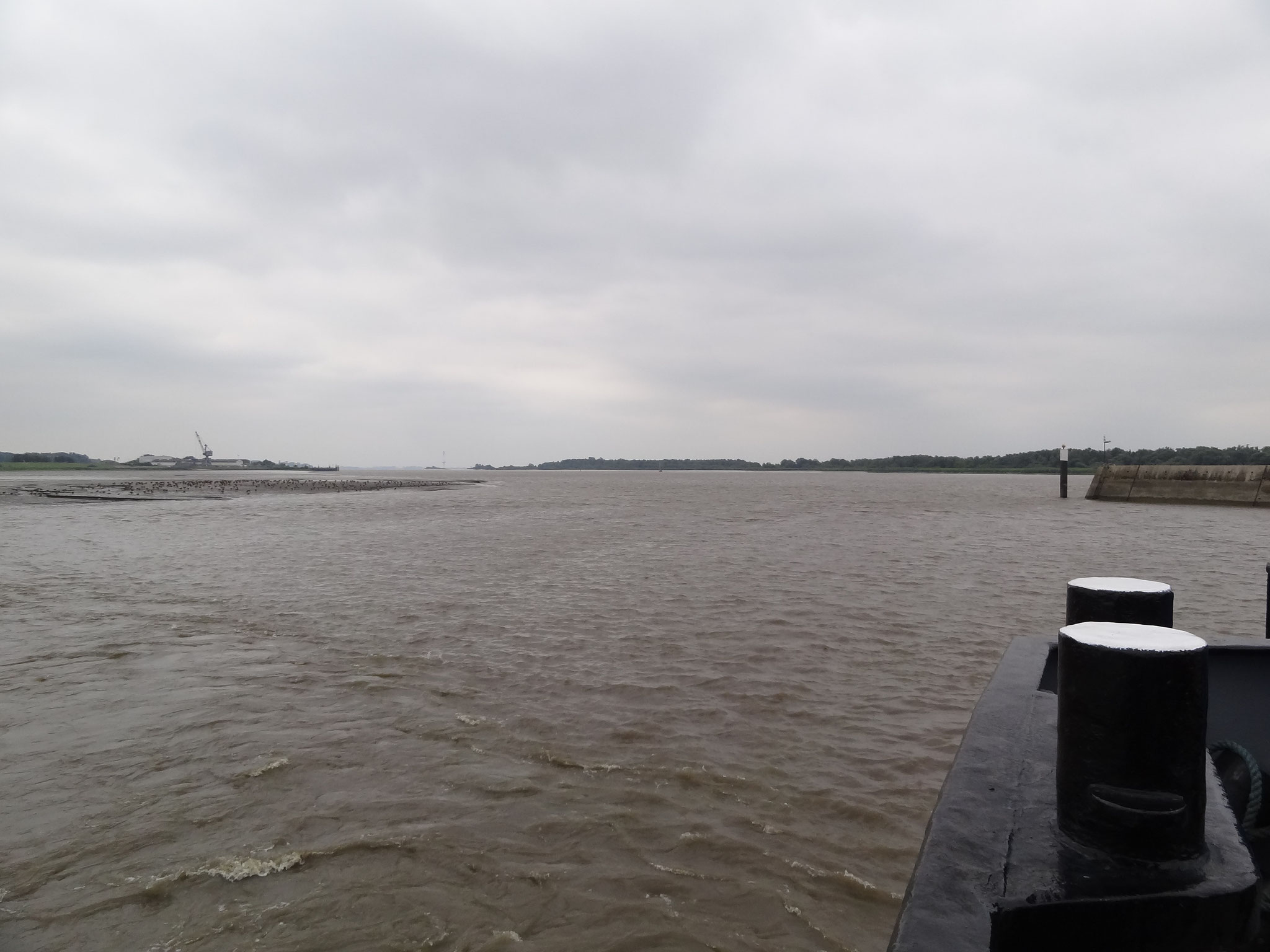 Elbe in Wischhafen