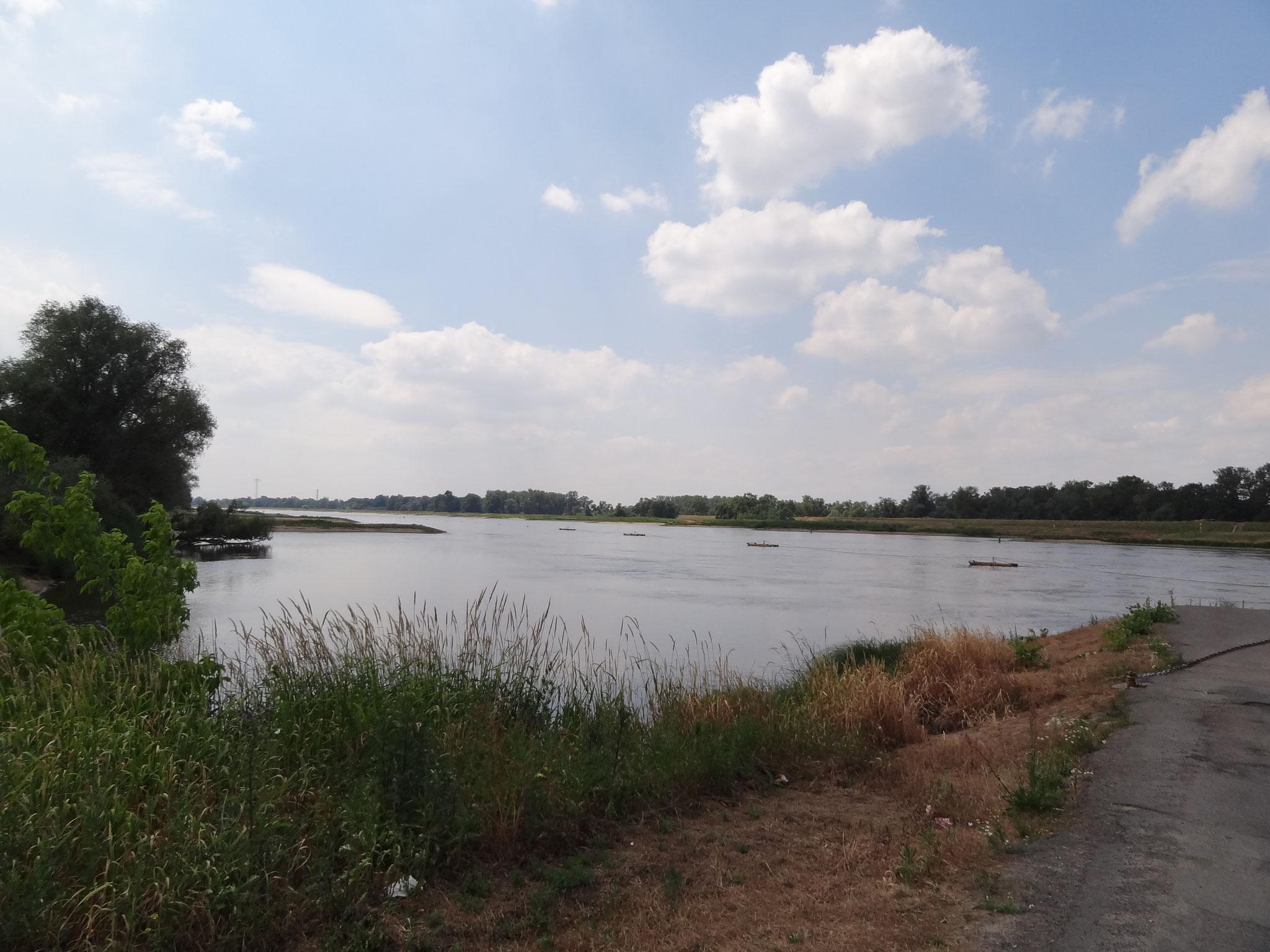 Elbe bei Sandau (Elbe)