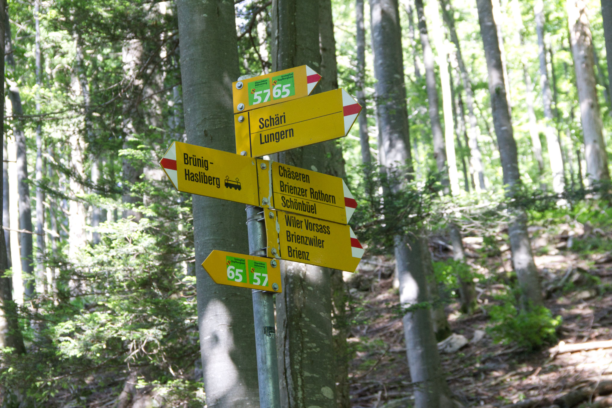 Das Brüniger Älpeli ist vom Brünigpass aus auf den Wanderwegen gut zu erreichen.