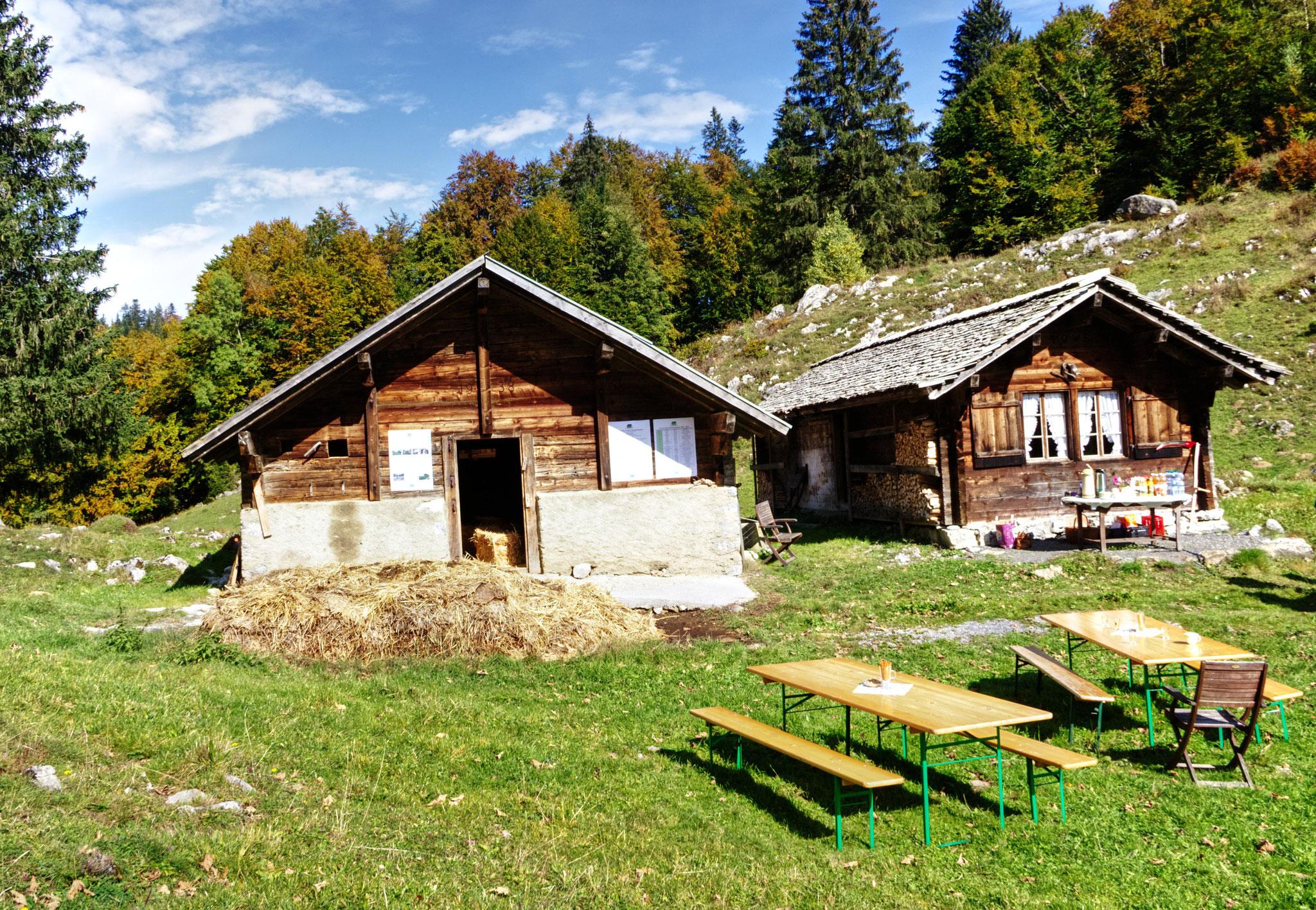 Stall und Alphüttli im Stafel Älpeli. Das Hüttli kann für Ferien gemietet werden.