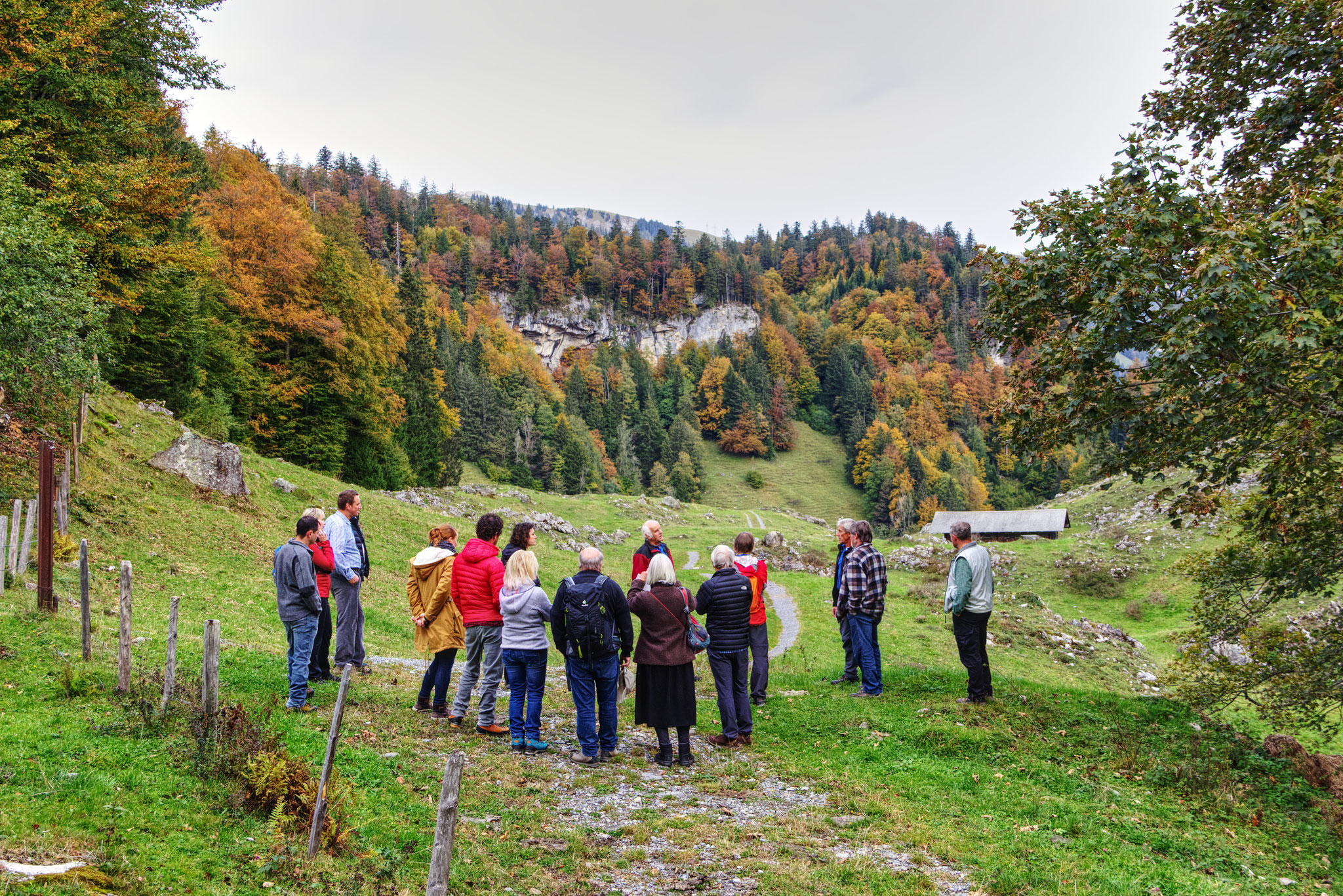 Der Alpvogt Simon Kohler erklärt die Bewirtschaftung des Brüniger Älpeli.