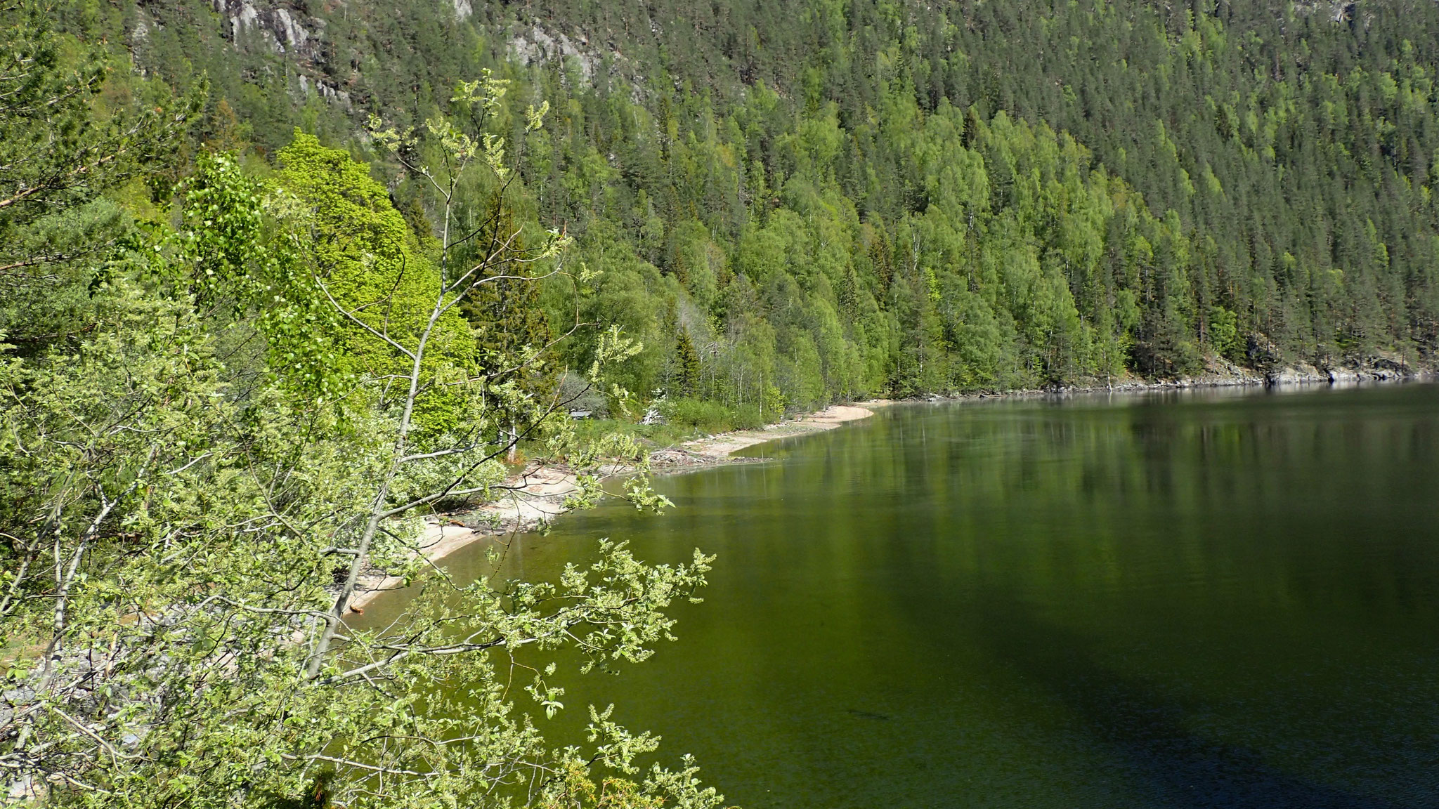 Sandvika Strand - Hovin