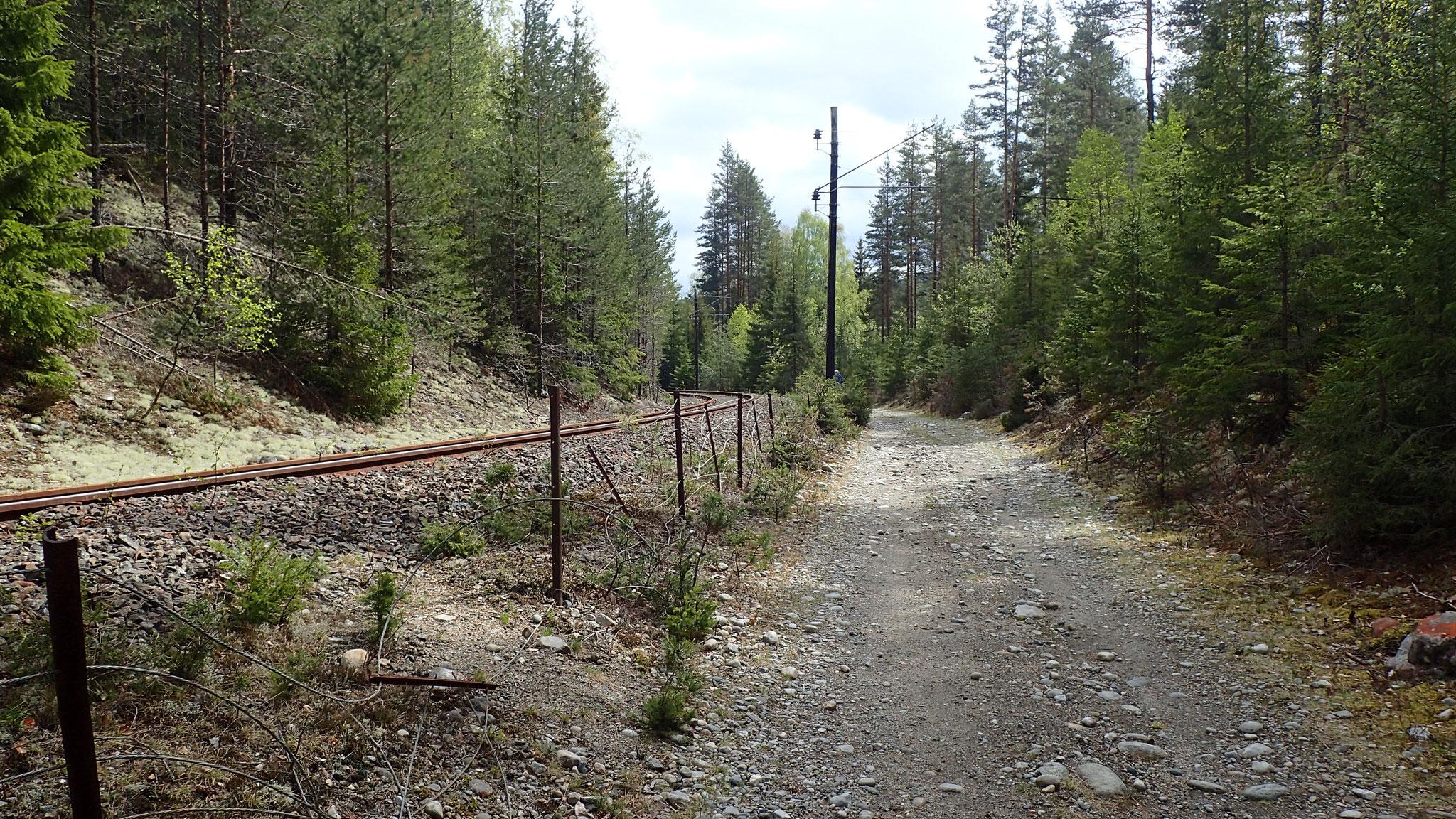 langs nedlagd jernbanespor