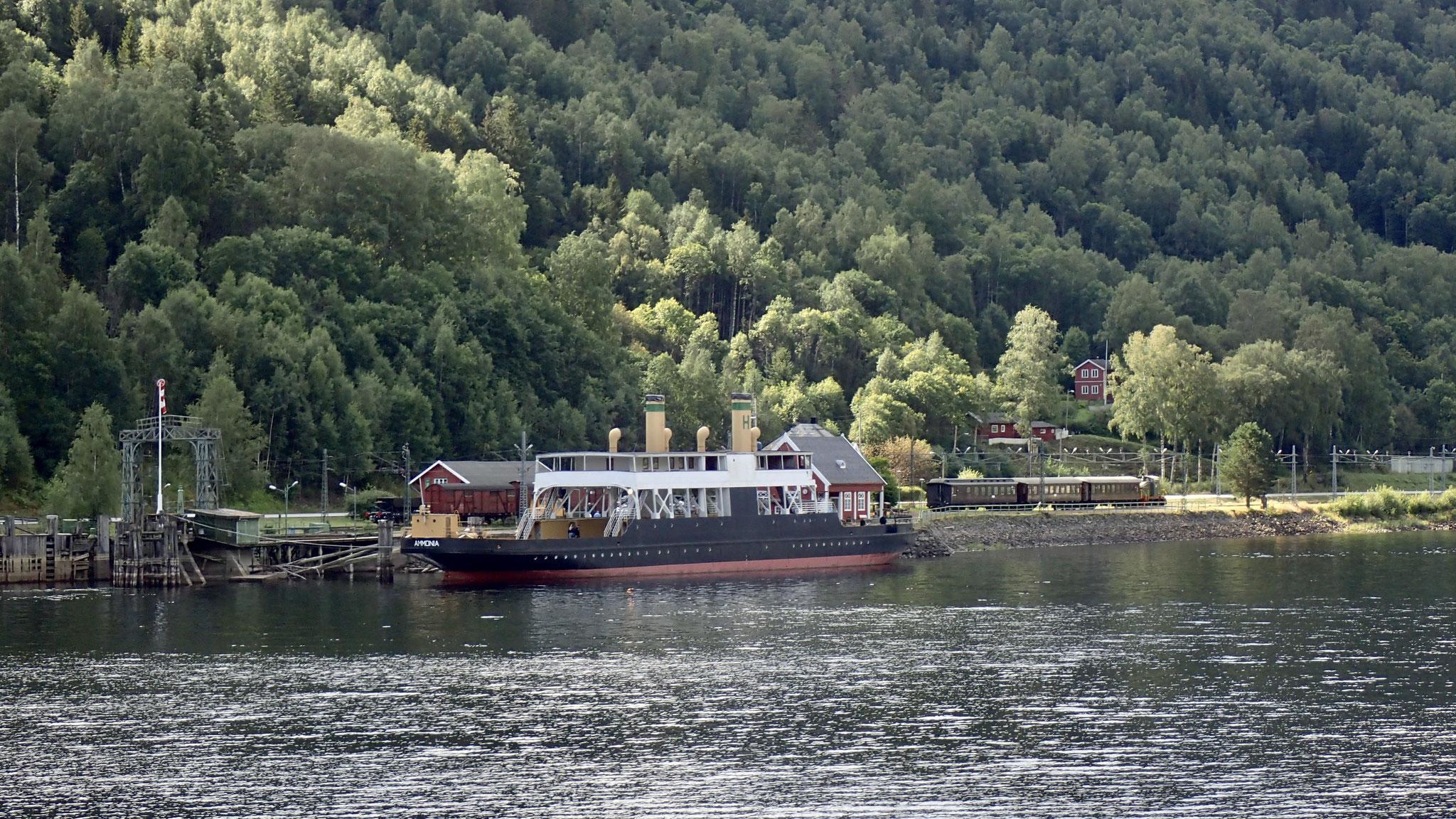 Ammonia und der historische Zug