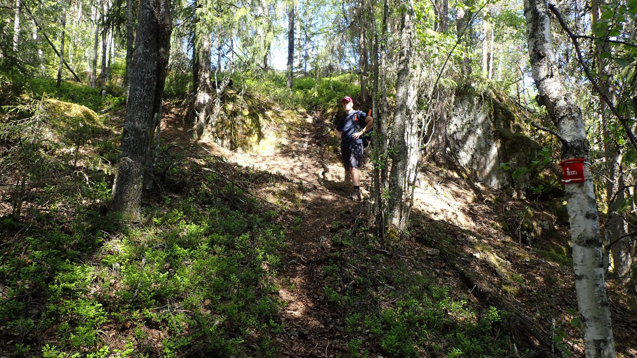 short way from View Point to pilegrimspath