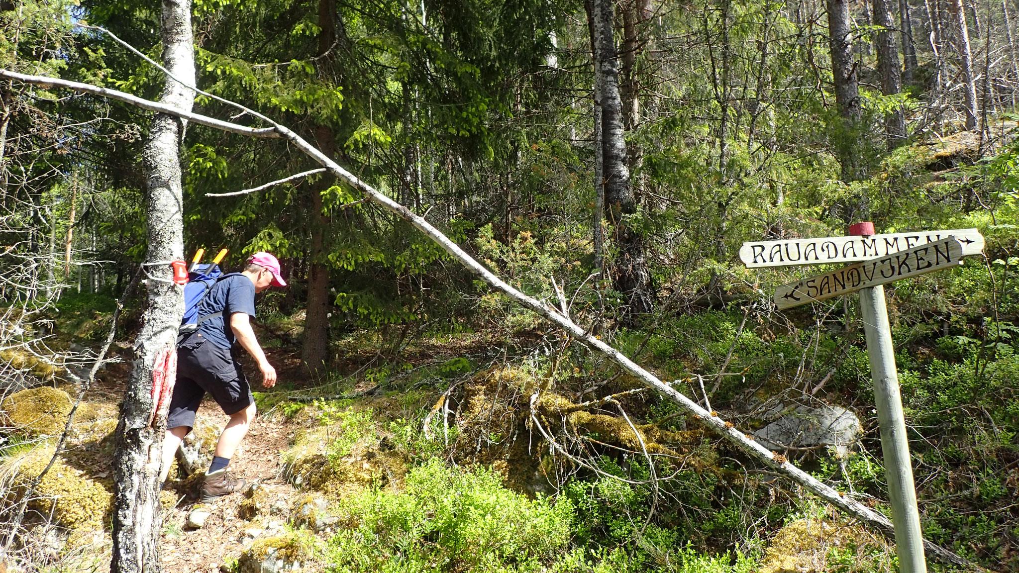 hier biegt ihr nach rechts Richtung Sandvika ab
